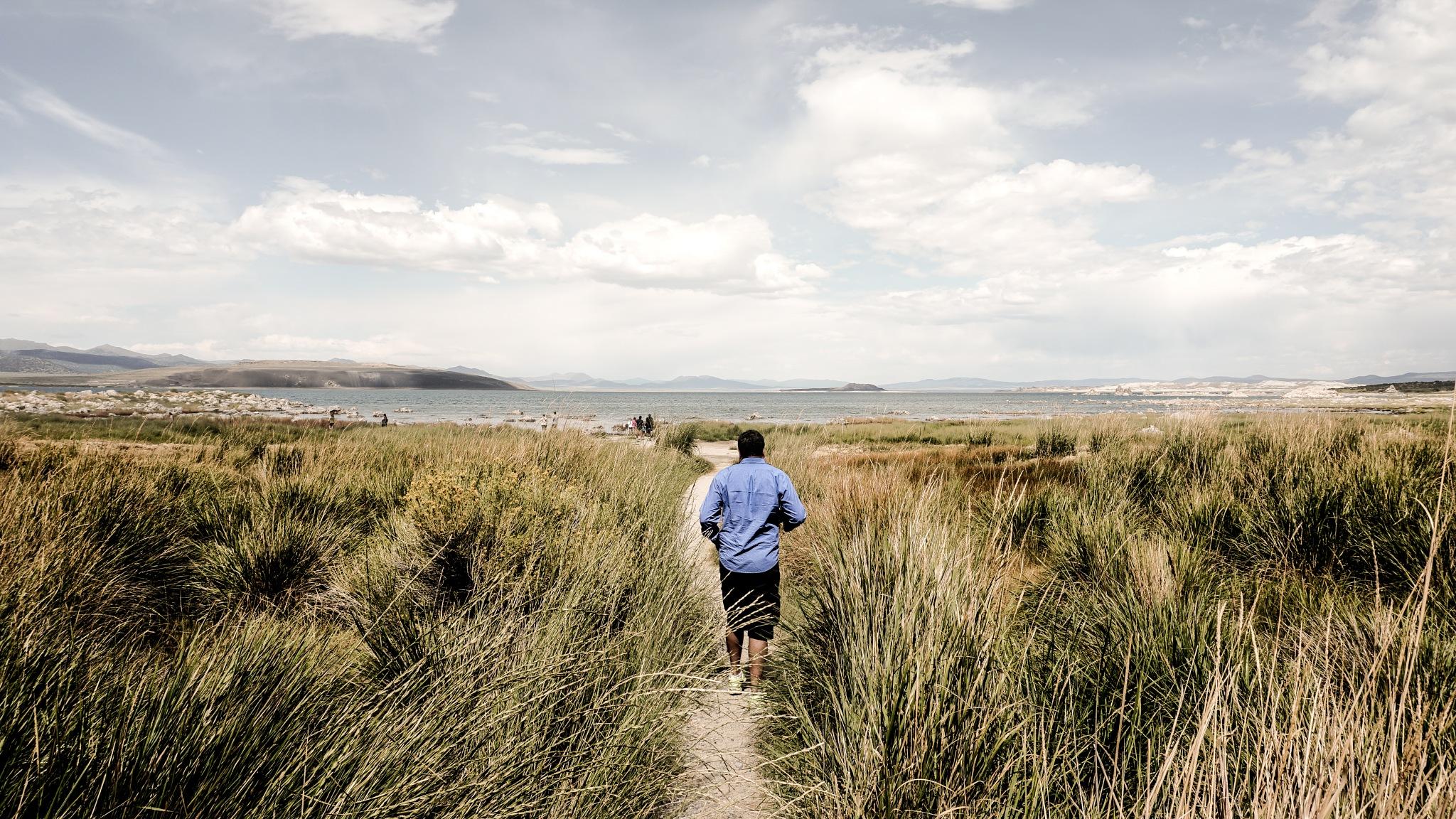 Path to Mono Lake by Tushar Sathe