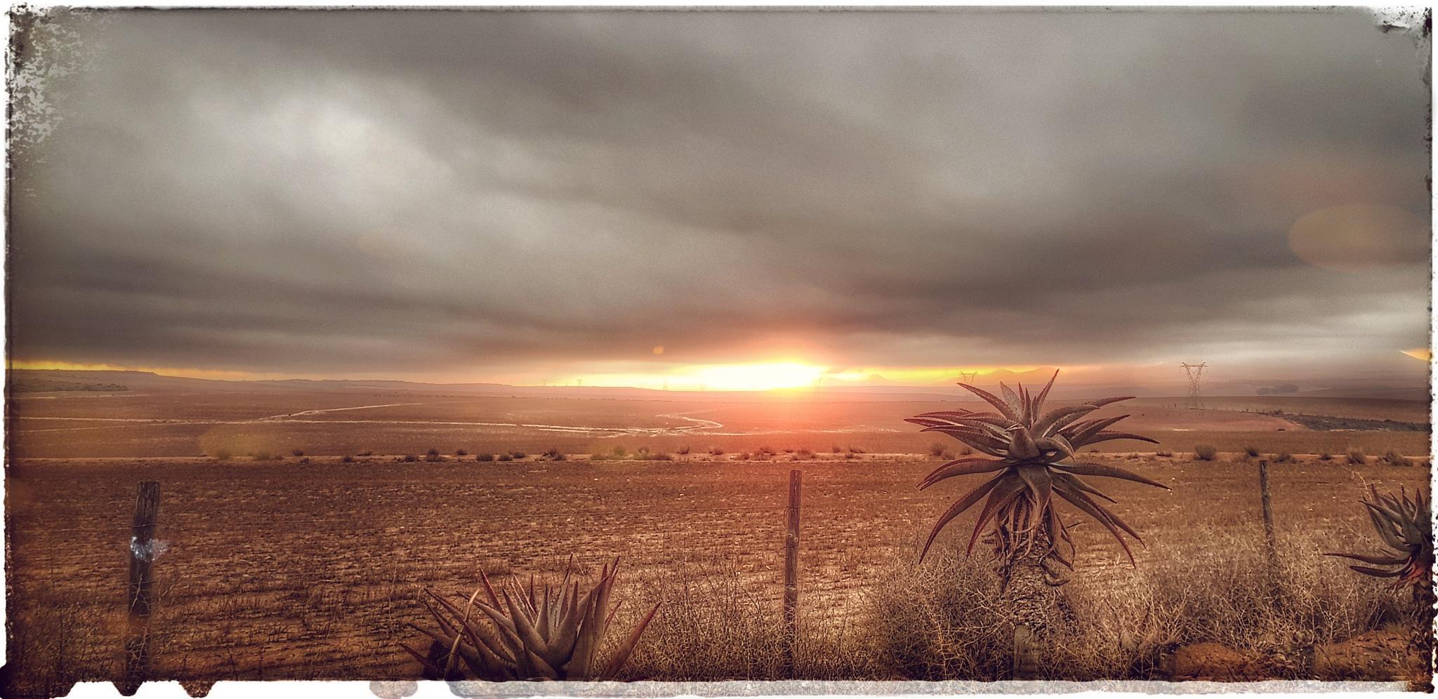Photo in Landscape #new day #sunrise #sun #clouds #aloe #sound