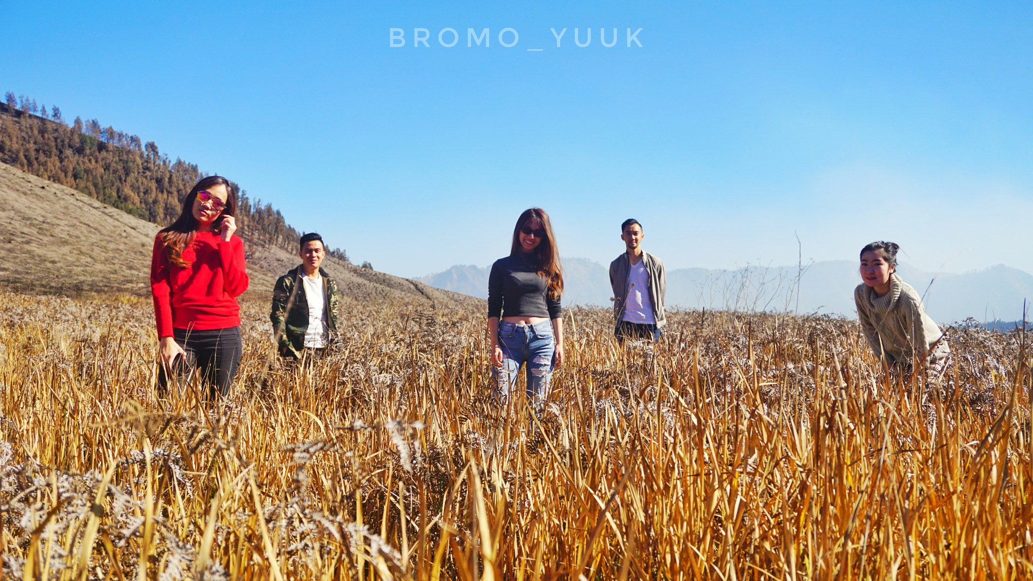 Open trip bromo by pendawatrans