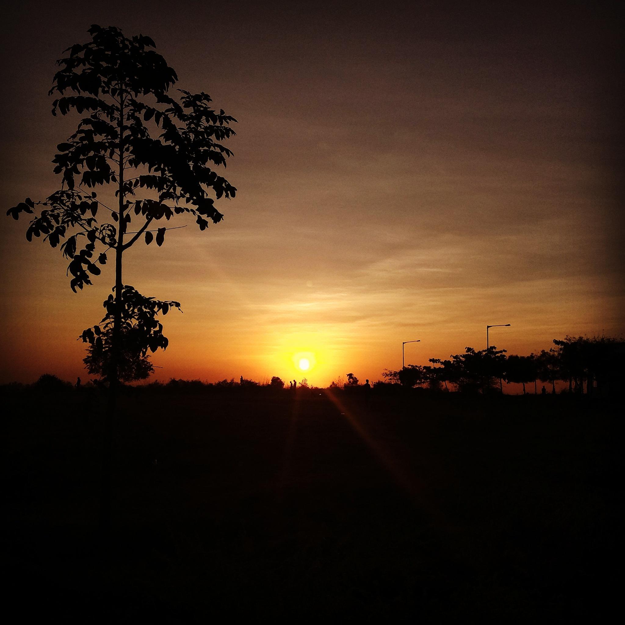 Sunrise by Harsha Bharadwaj