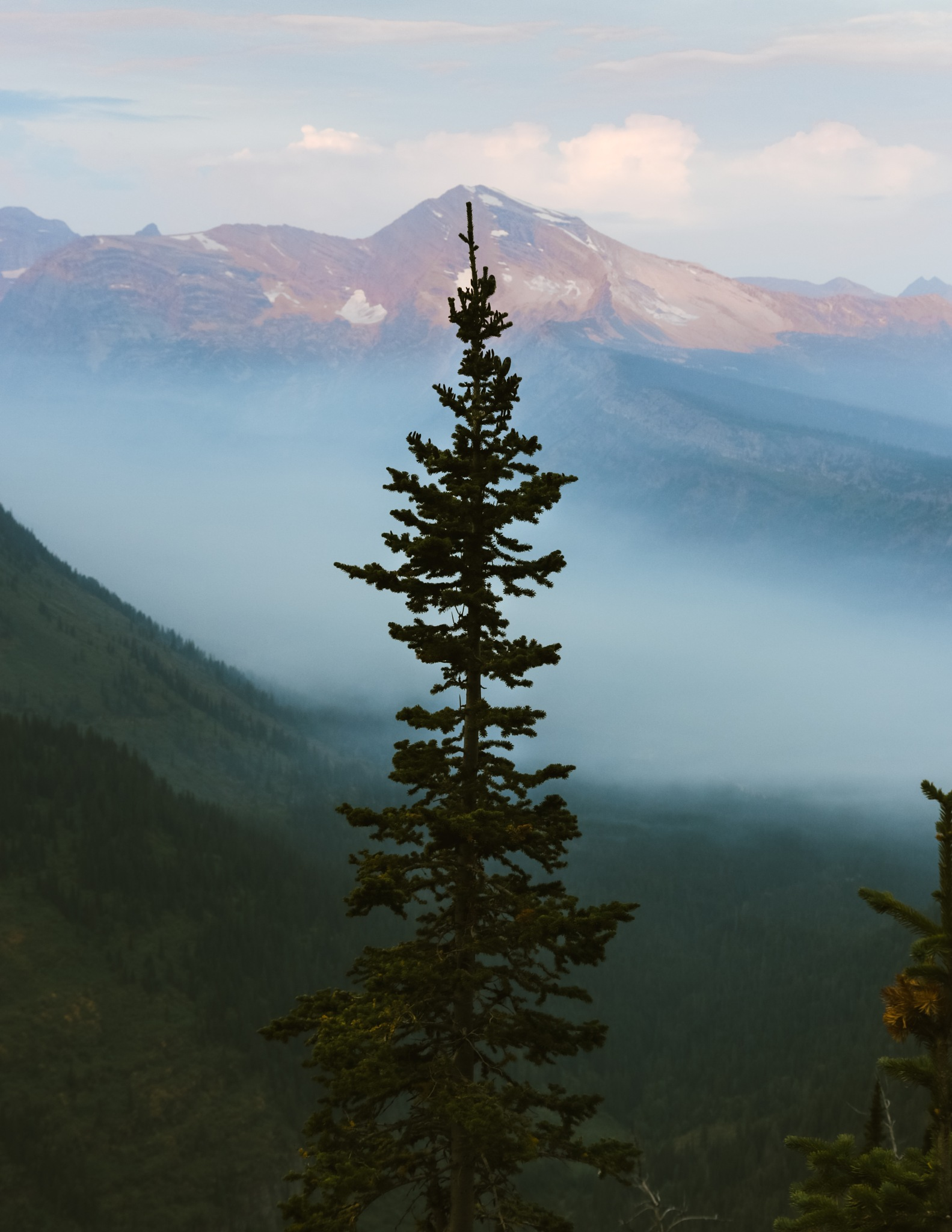 Morning in the Mountains by josiahtbonner
