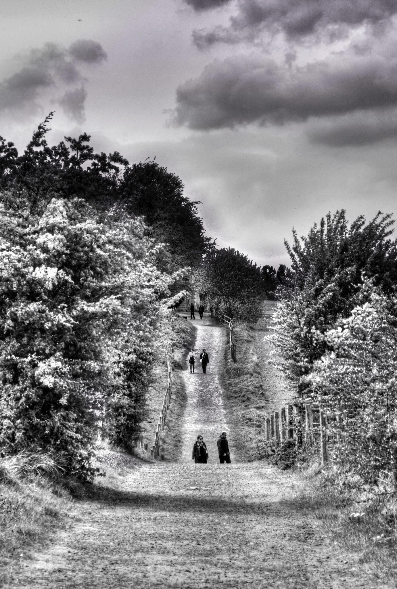 The walking life by Franczesko