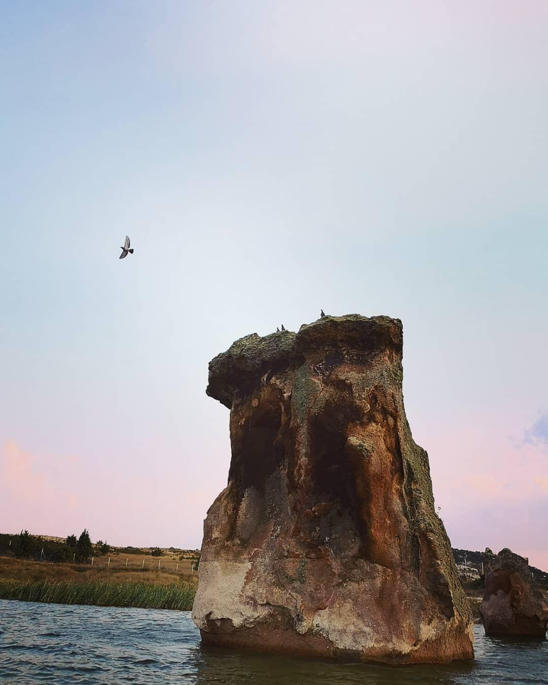 Let's fly.  by Ramazan Özer