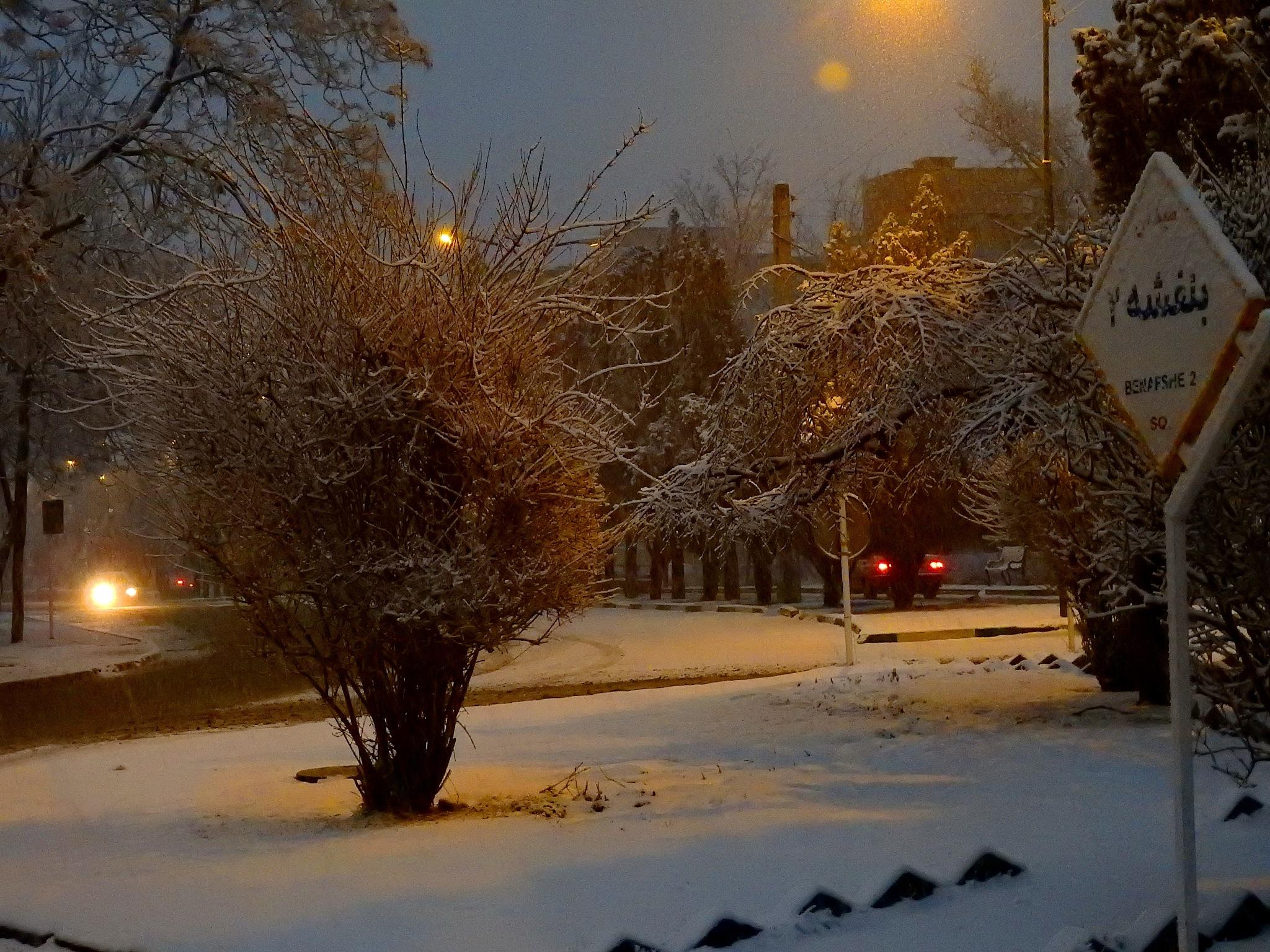 snowy night by Aahmad Hezavei