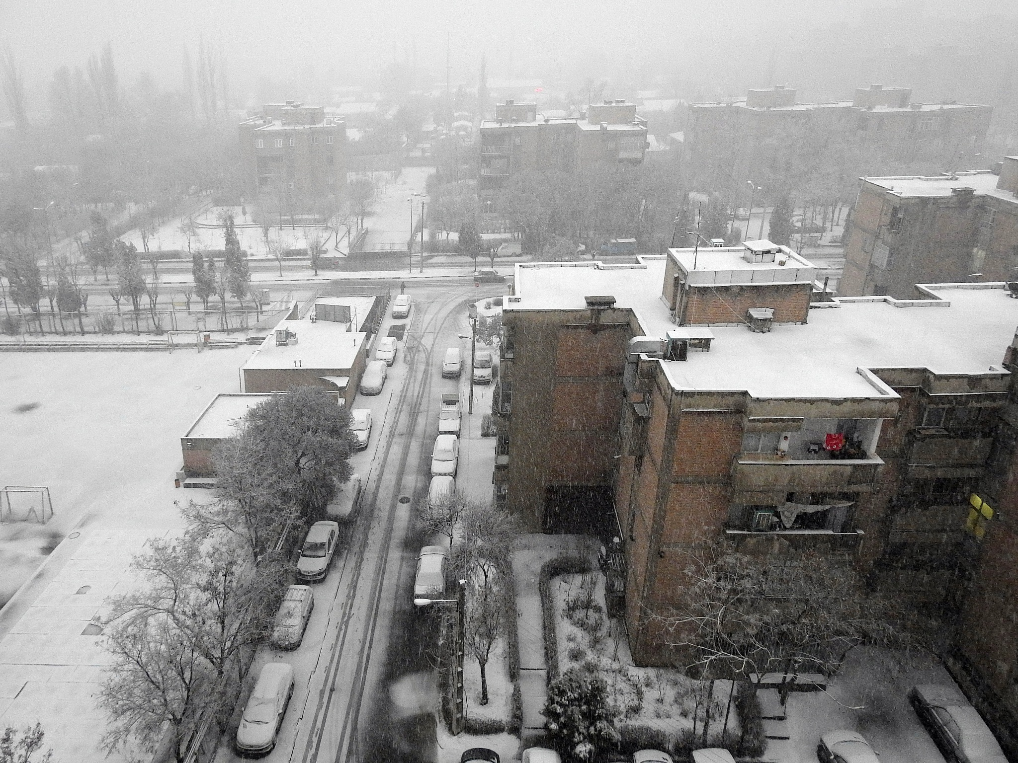 snowy day by Aahmad Hezavei