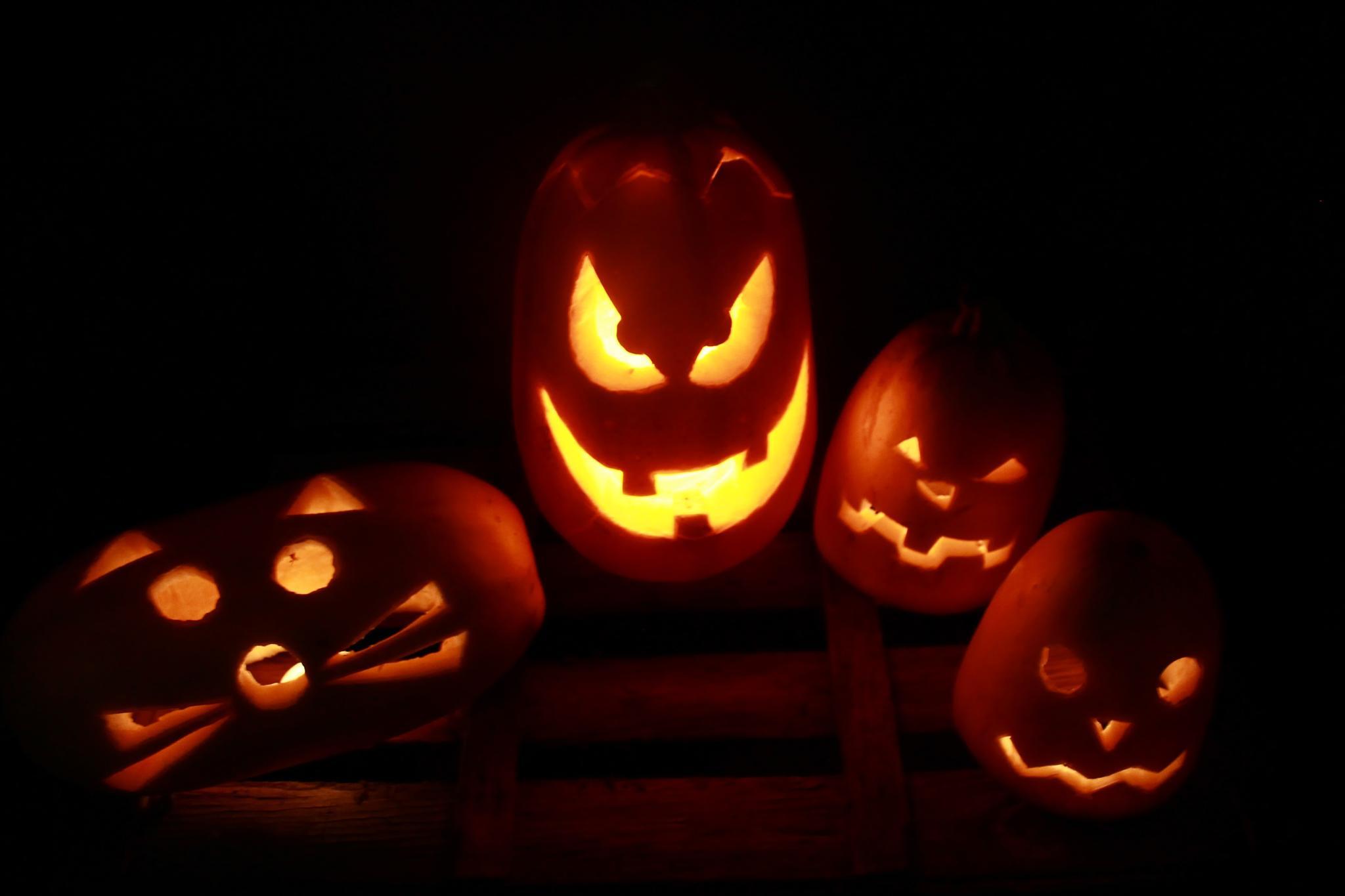 Photo in Random #halloween #pumpkins #halloween pumpkin