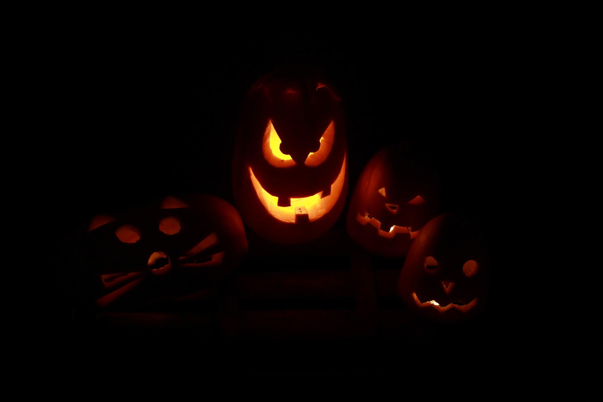 Night of the pumpkins by Bettina Bognár
