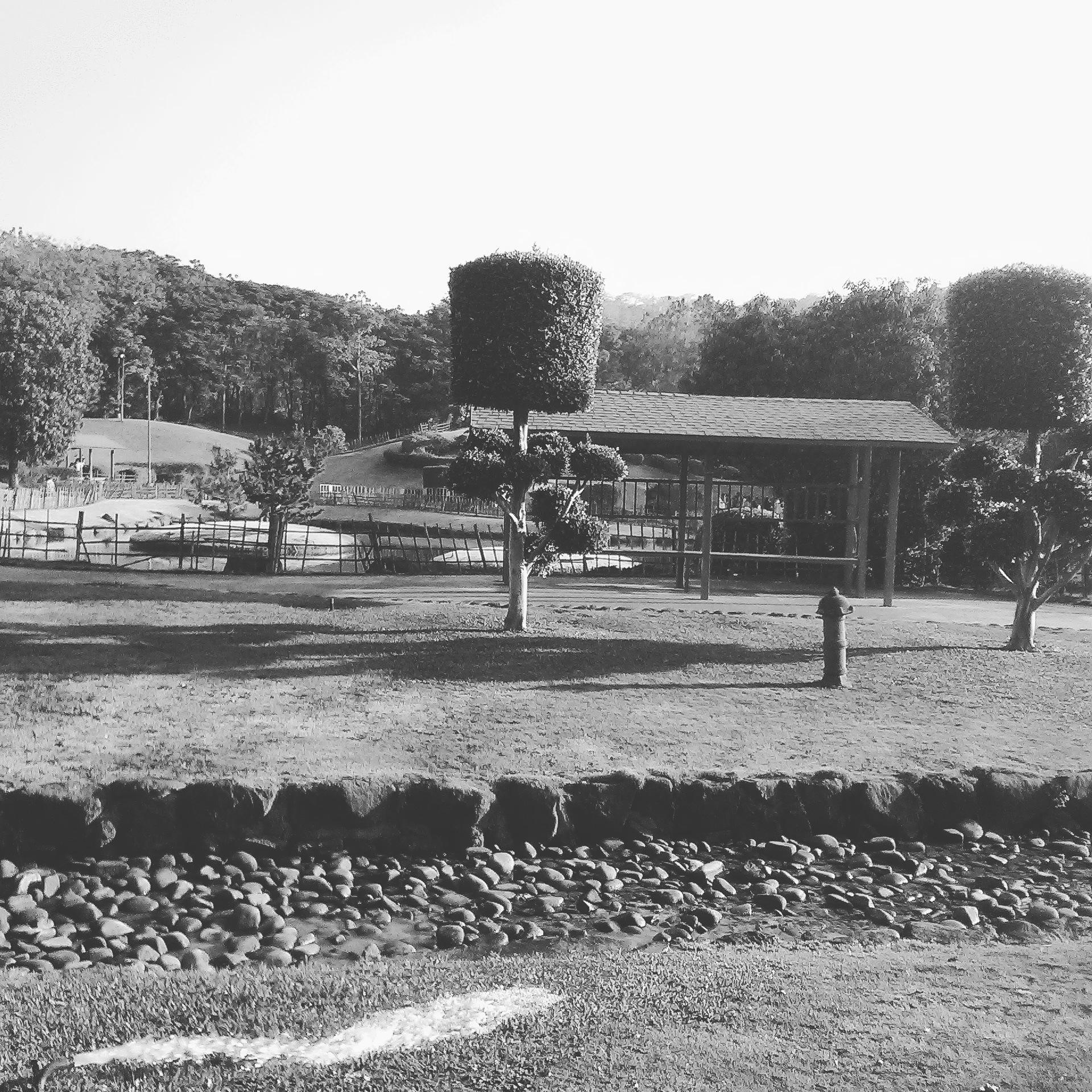 Black and White photo by Chitralekha