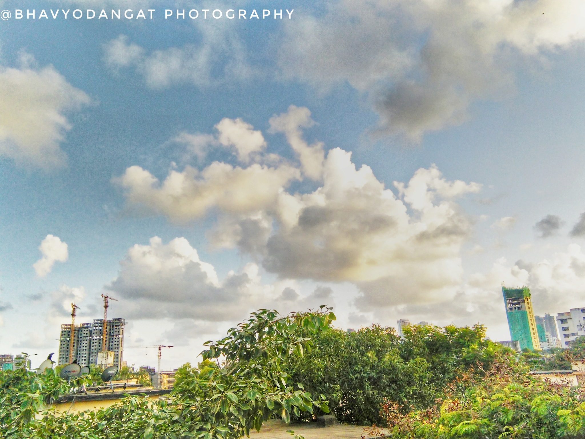Untitled by Bhavesh Dangat
