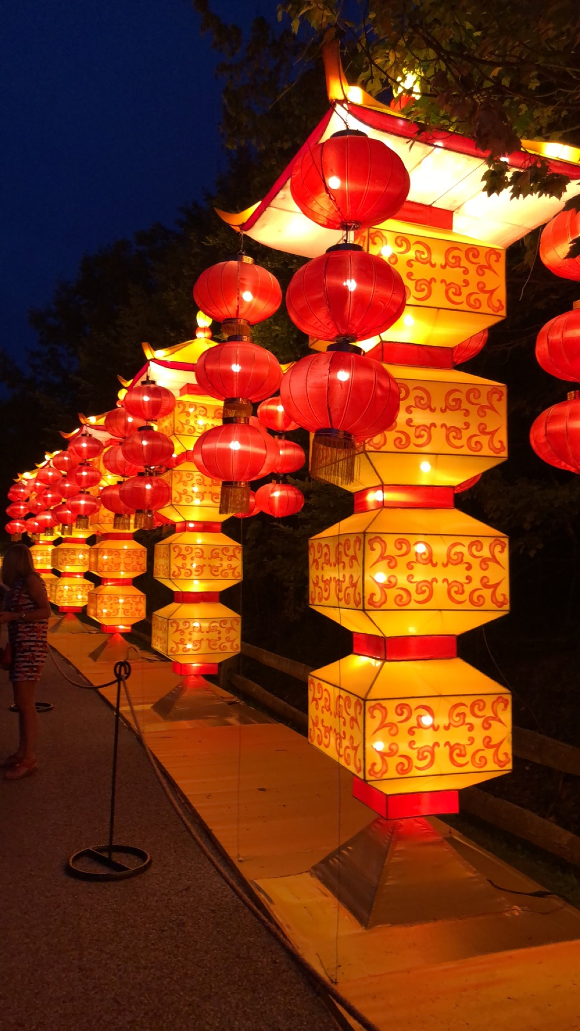 Chinese Lights  by Yelena