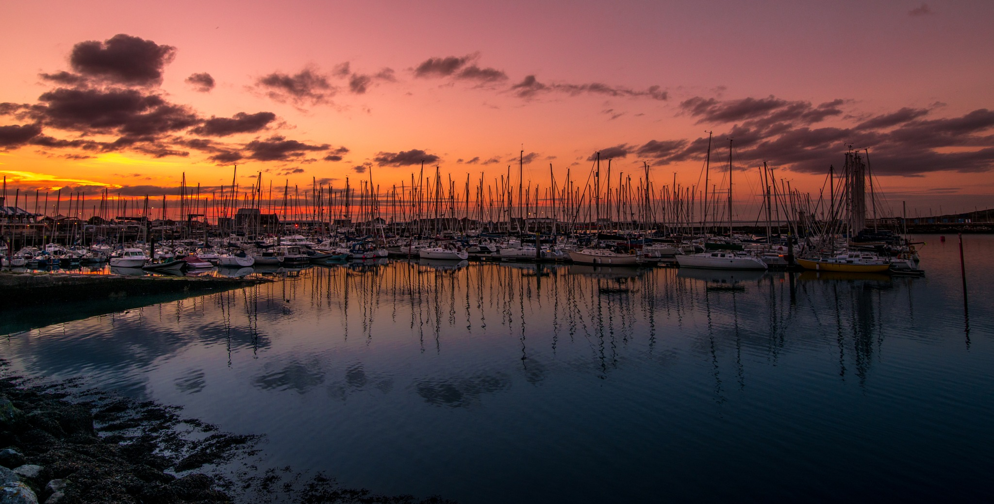 Reflections by Marian Iustin Farcas