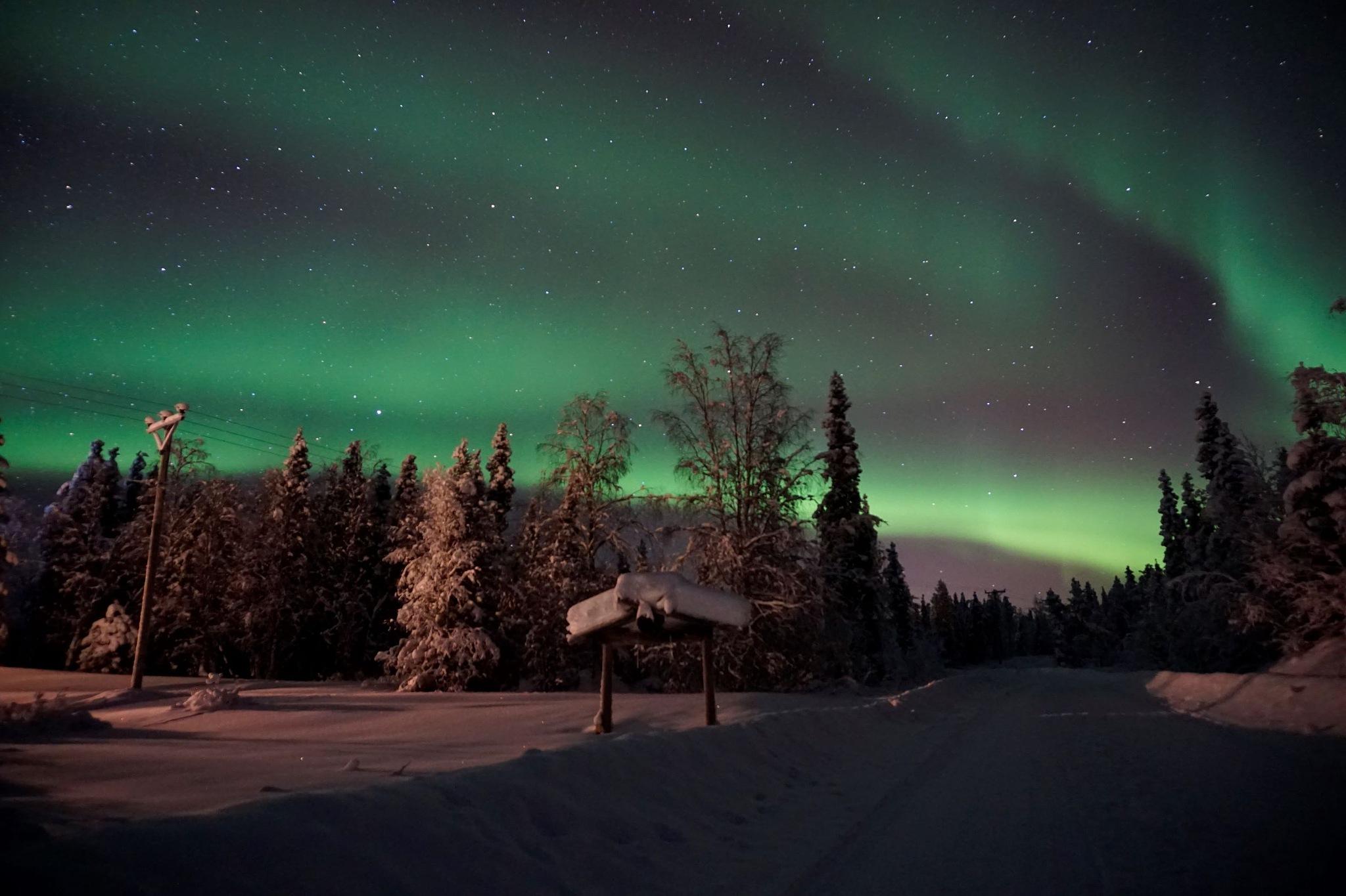 Photo in Landscape #lapland #laponie #suédoise #aurore #northernlight #aurora #landscape #snow