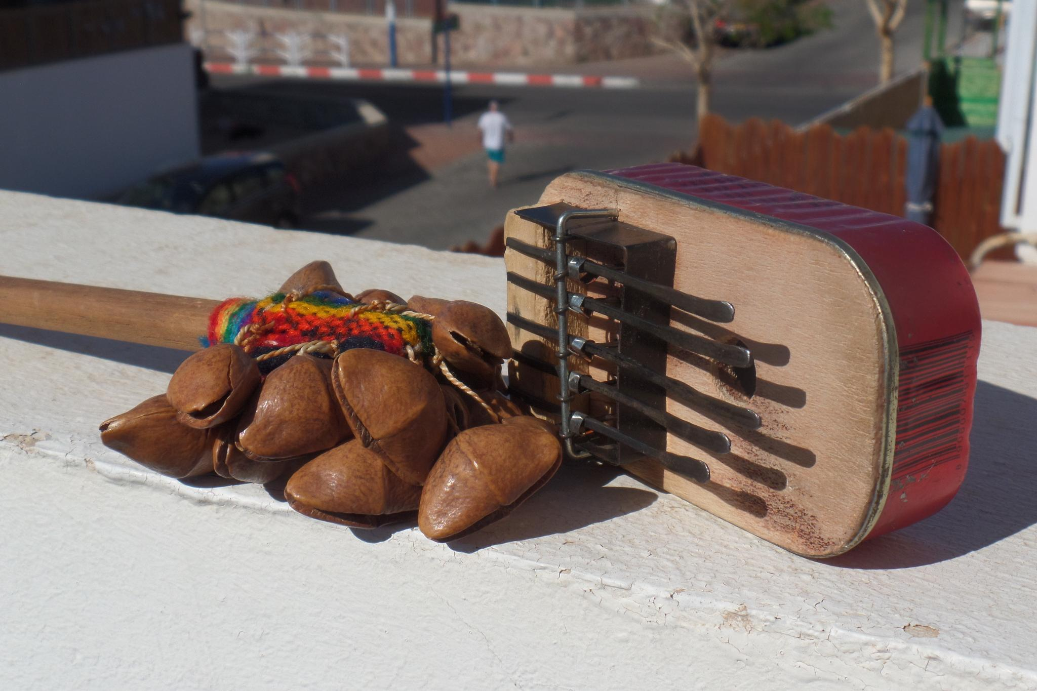 Brazilian music instrument - made with nuts and a sardine tin! by Francine Waterman