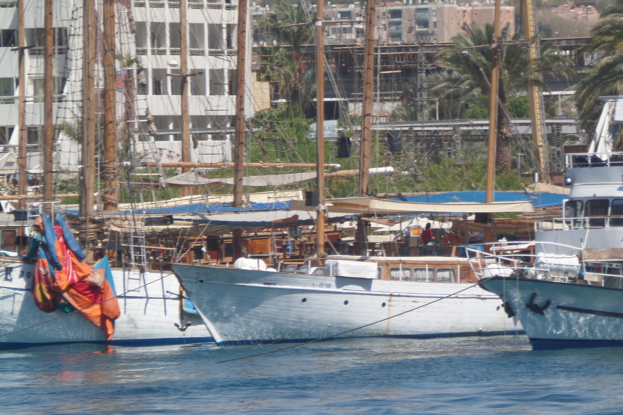 Marina - Eilat by Francine Waterman