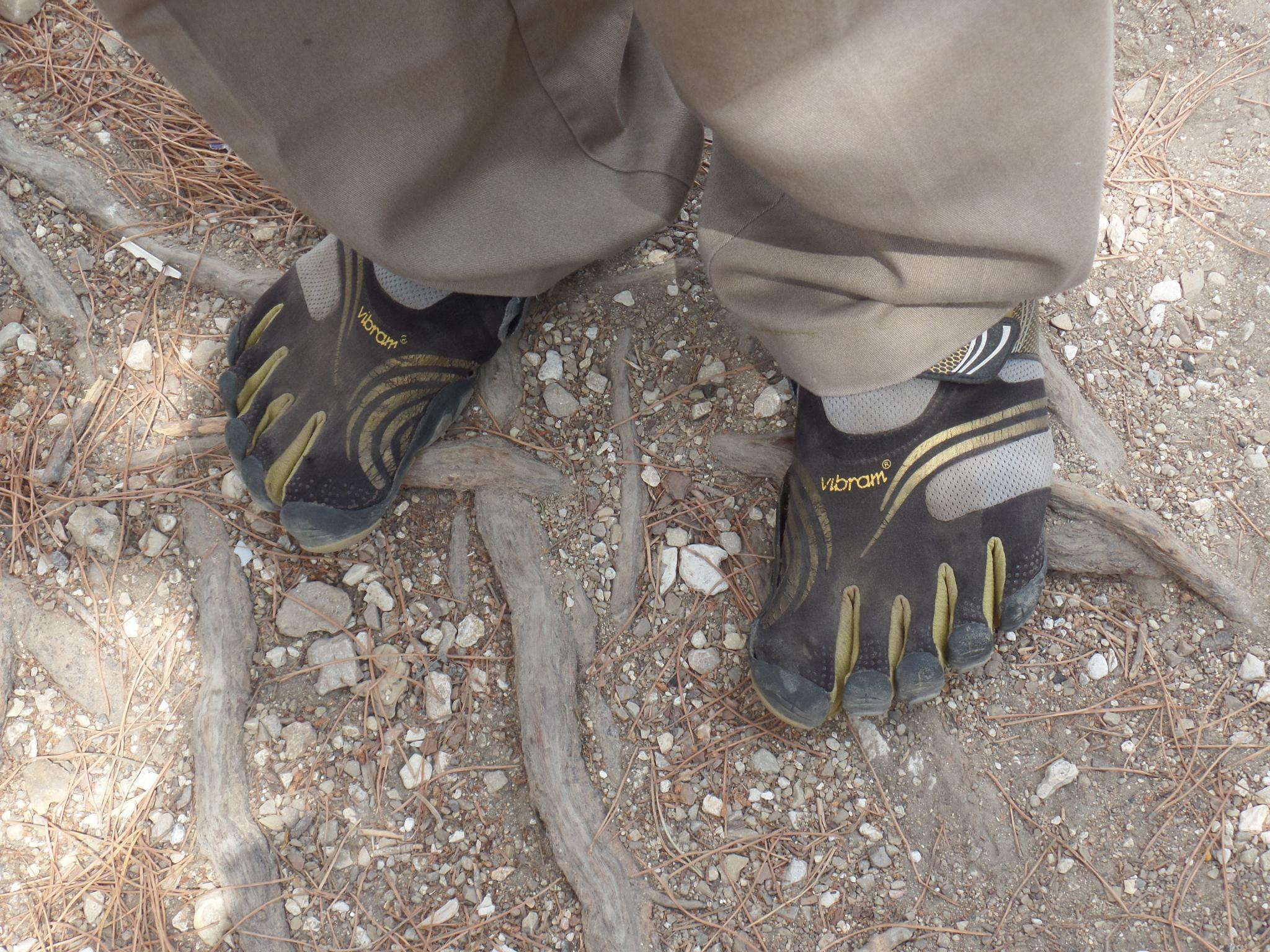A Tourist Guide with Gorilla Spirit (and shoes) by Francine Waterman