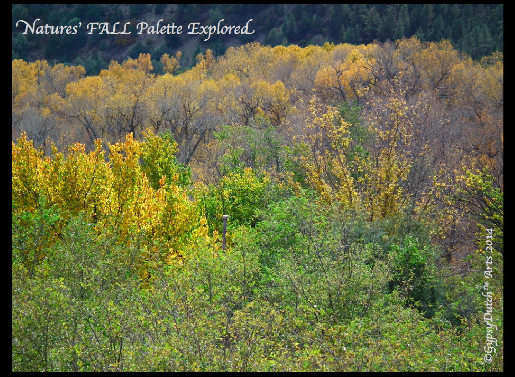 Nature's Fall Palette Explored by GypsyDutch
