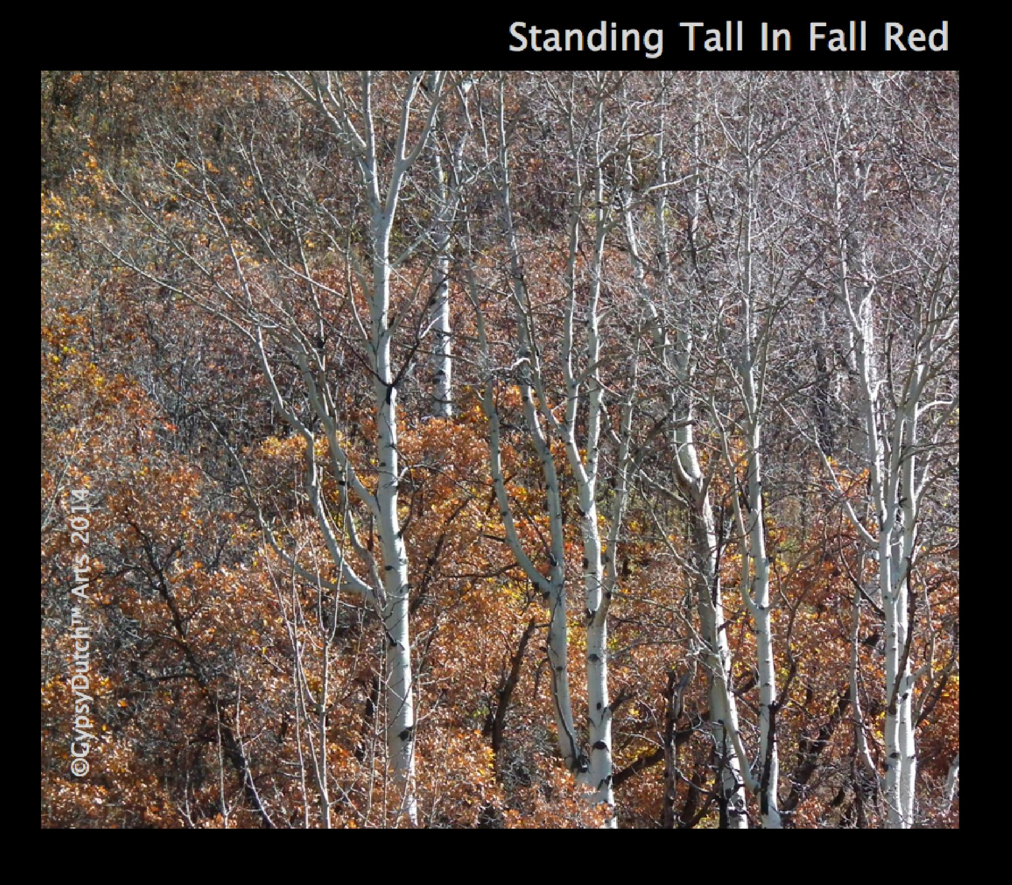 Standing Tall In The Red by GypsyDutch