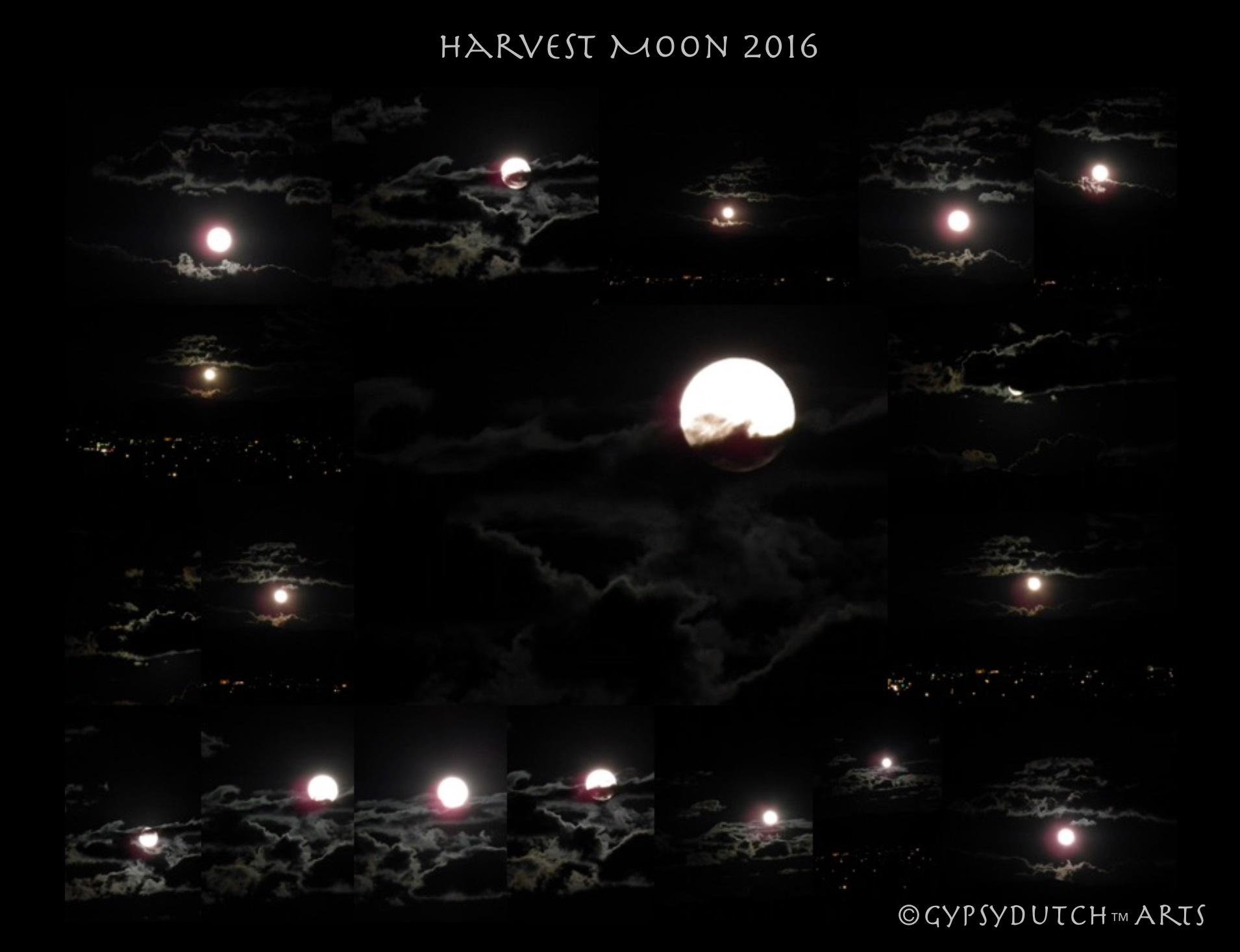 Harvest Moon 2016 Collage by GypsyDutch