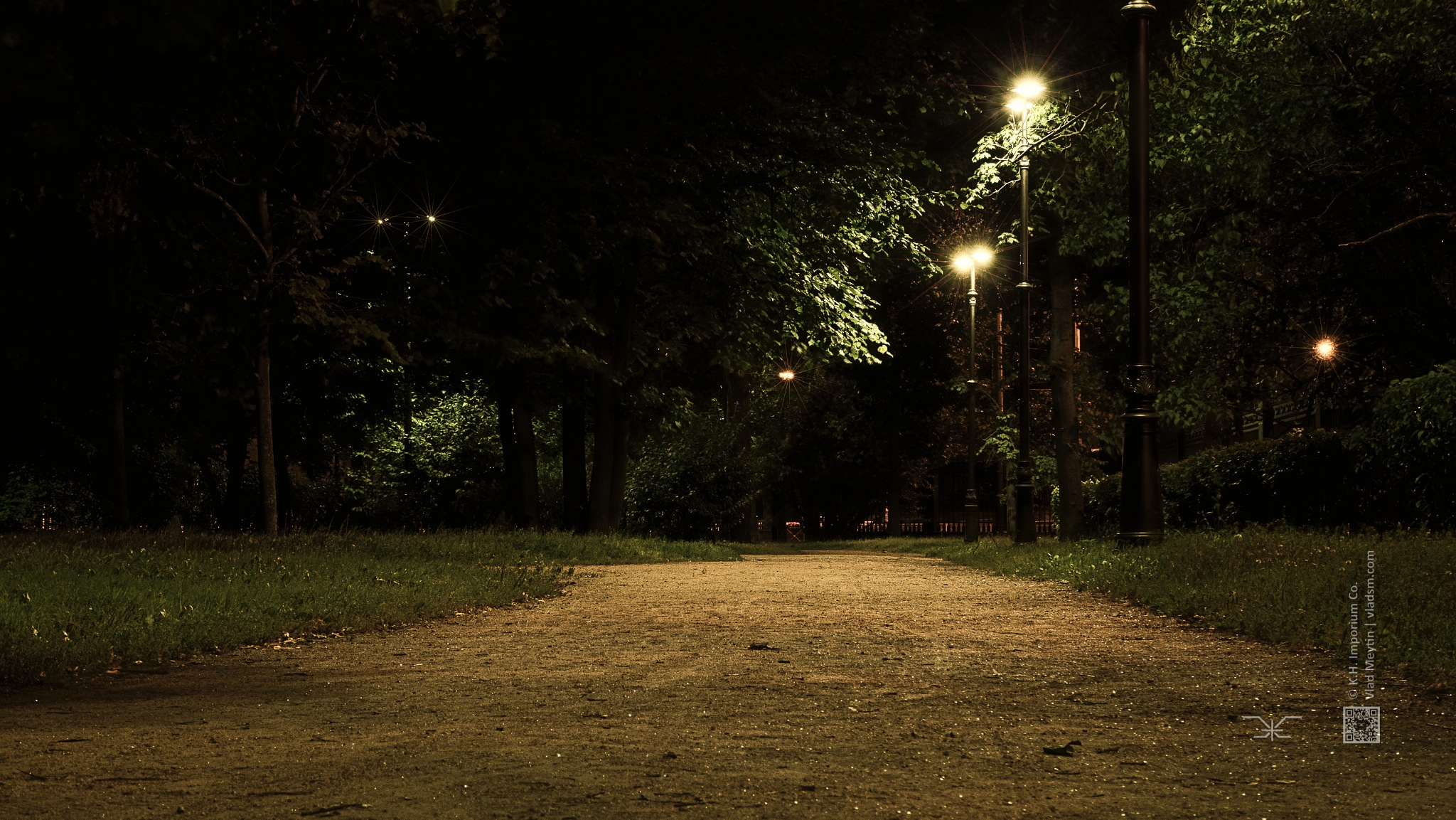 Photo in Urban #city park #russia #st. petersburg #night #night city #trees