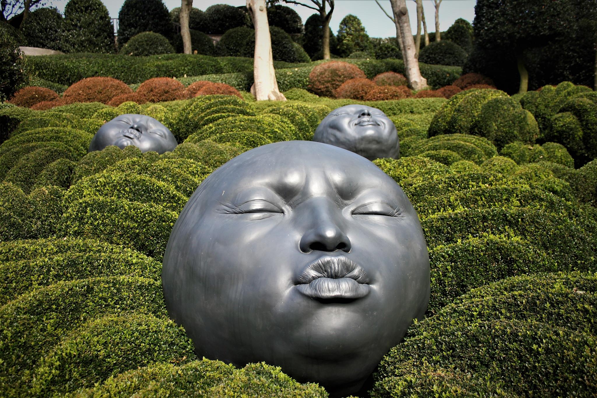 Les Jardins d'Etretat by Ilse Ravestyn