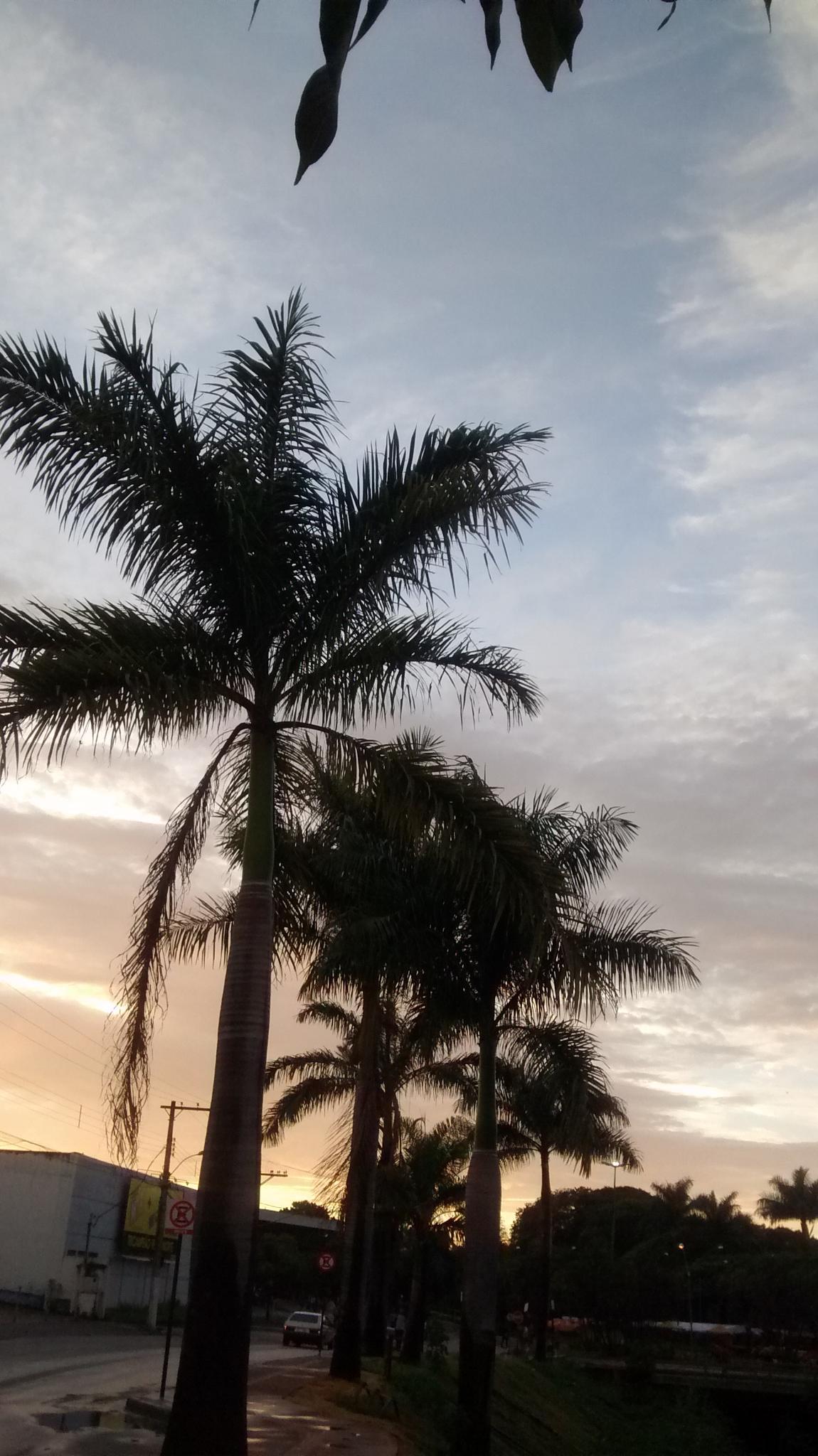 As belezas do amanhecer by Ângela Maria