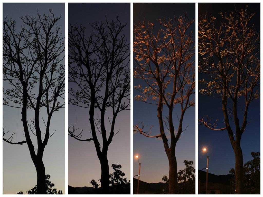 Noche... by Clary Escudero Zapata