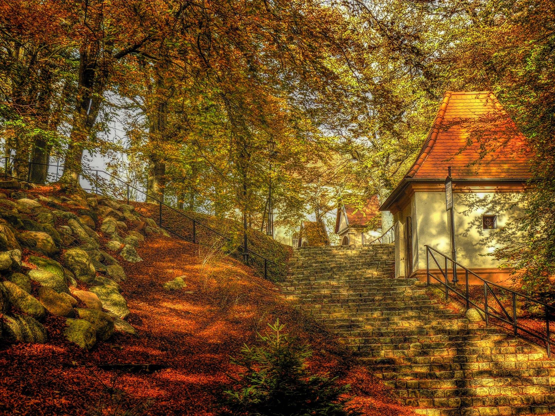 Autumn vol.1 by Grzegorz Skwarliński