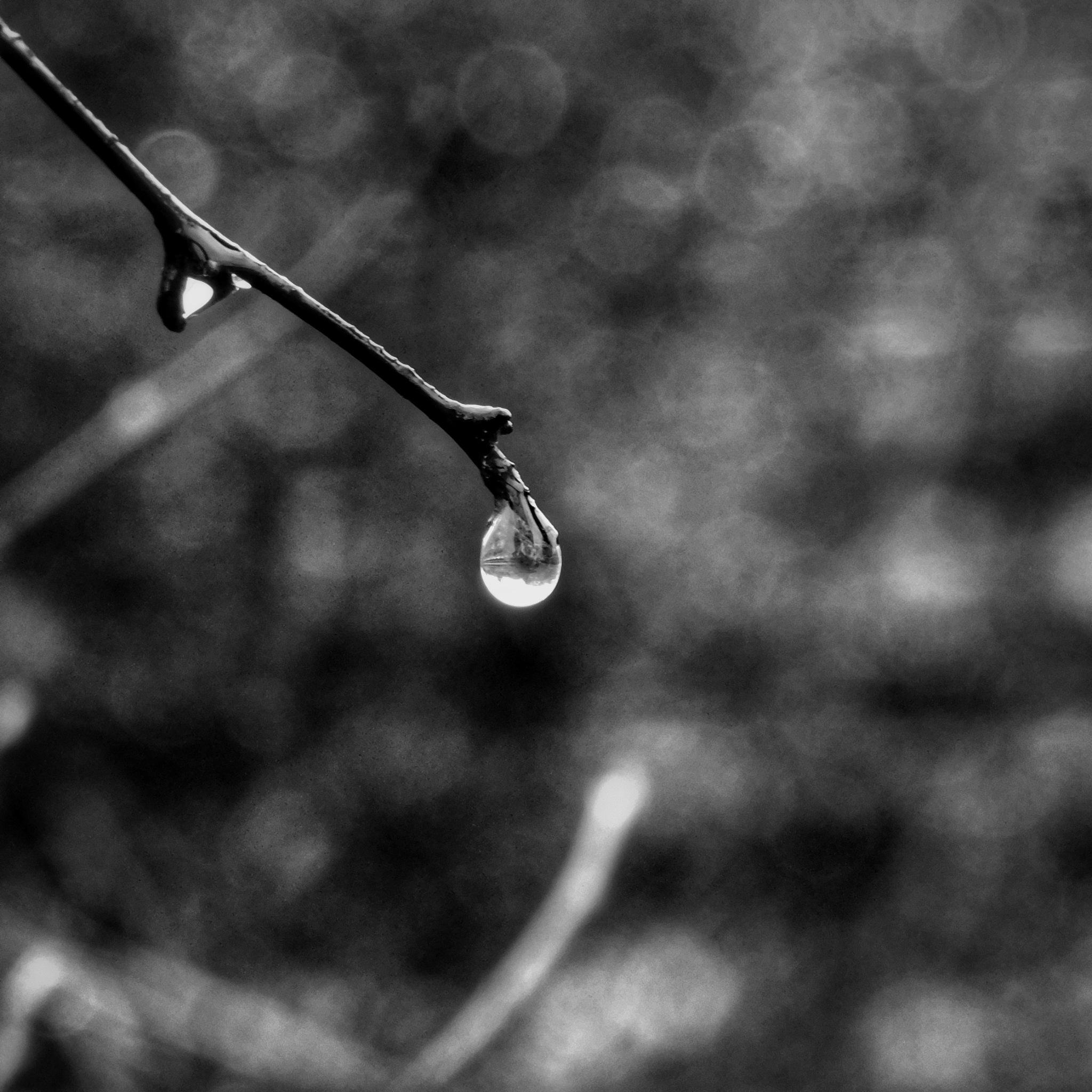 drop by Grzegorz Skwarliński