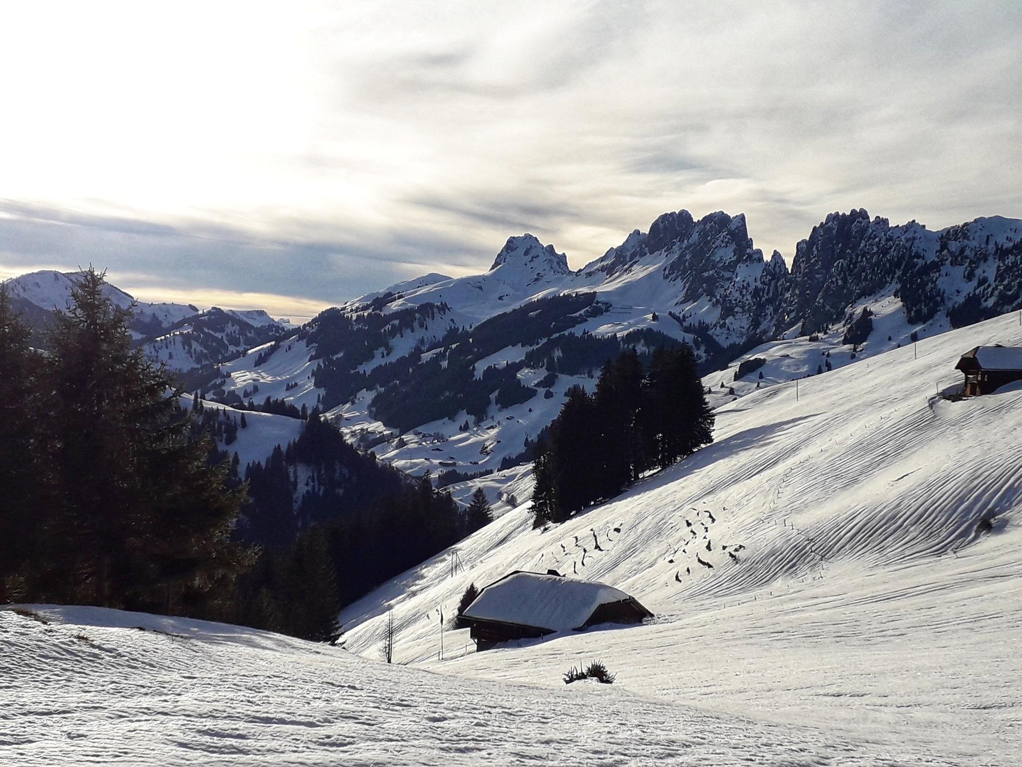 winter day by Mathias Winkler