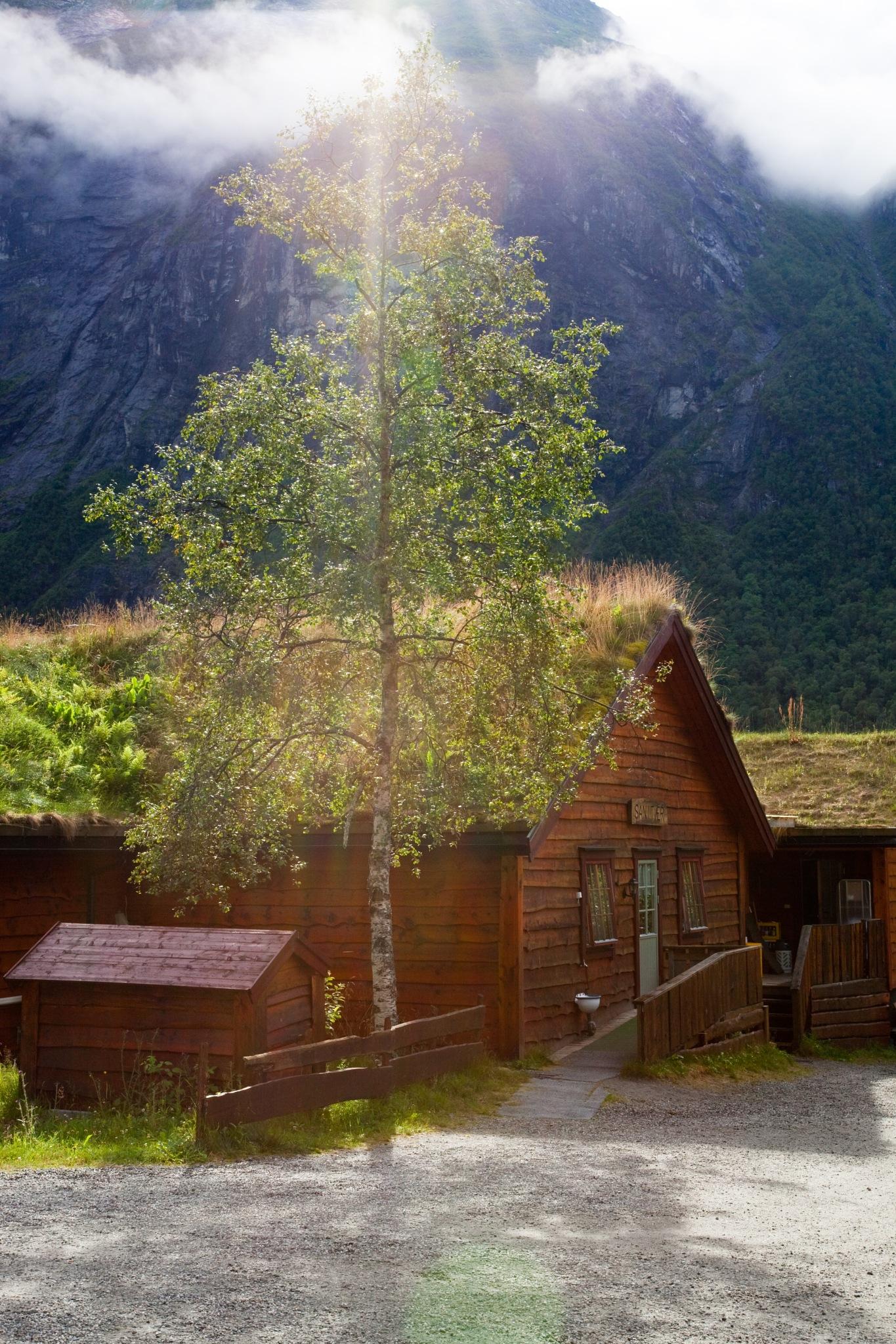 Sunny day in Norway by Evgeny Kravchenko