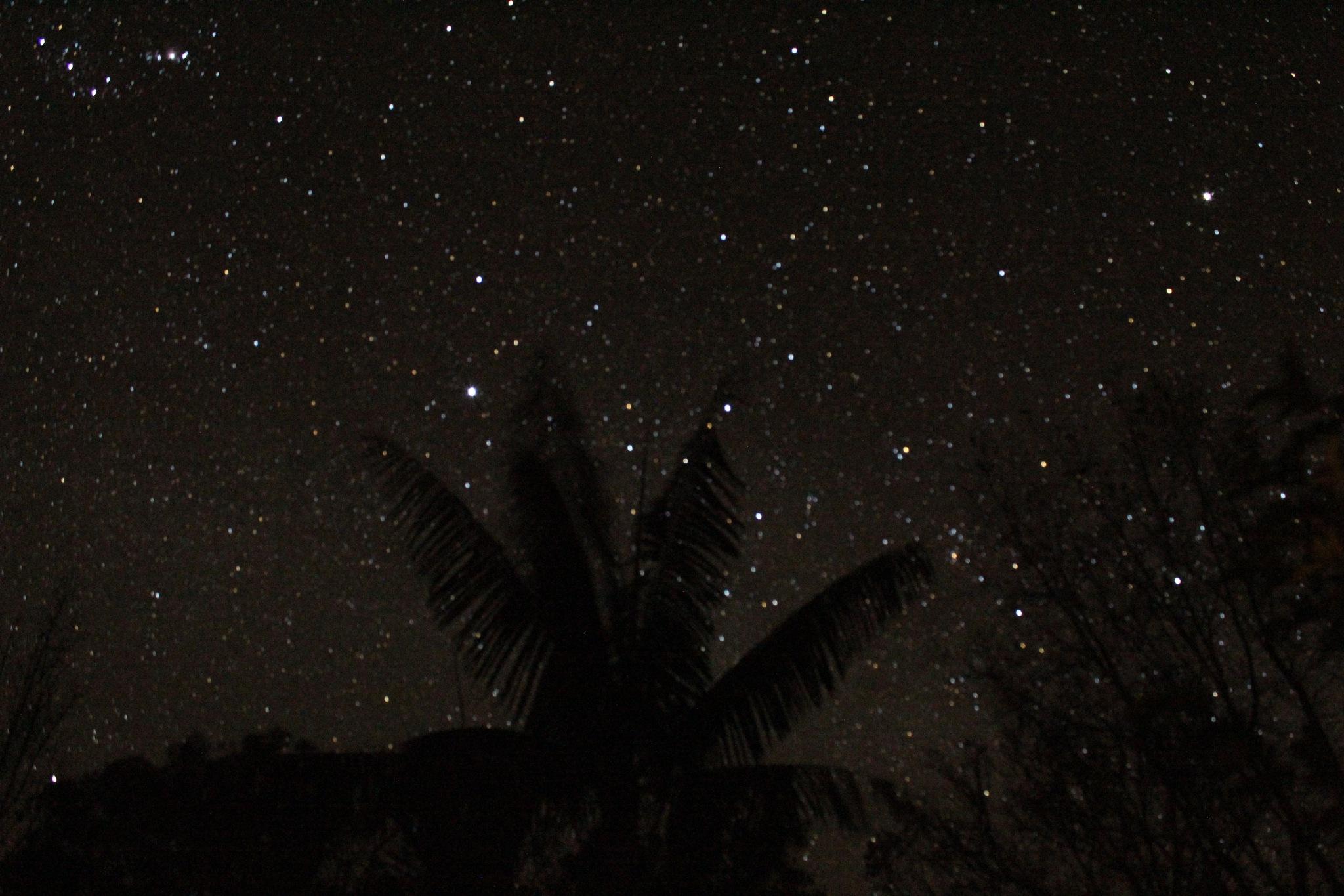 Stars. by Mumma Bear