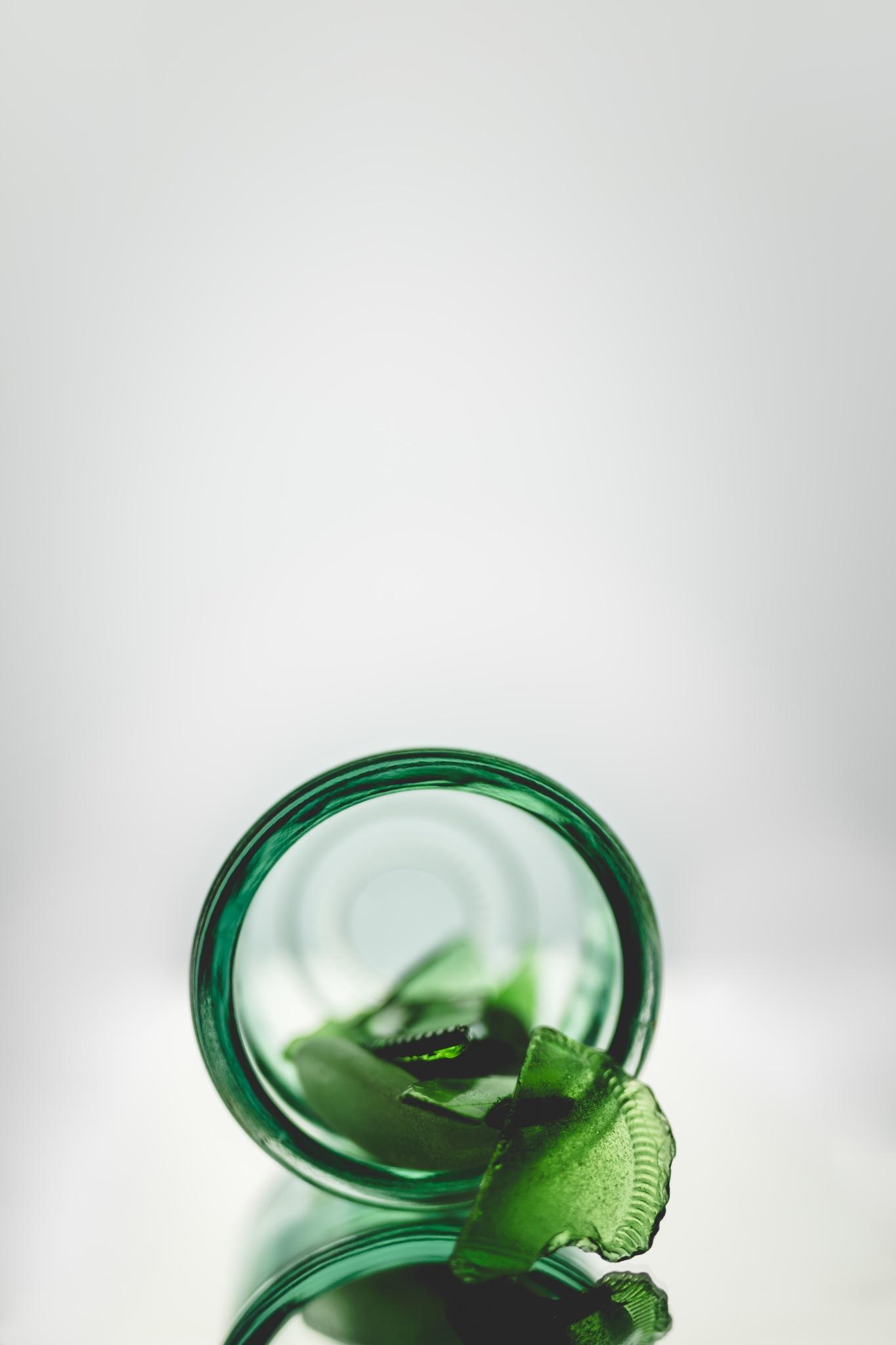 #076/365 Green by Debra Lincoln- MacPherson