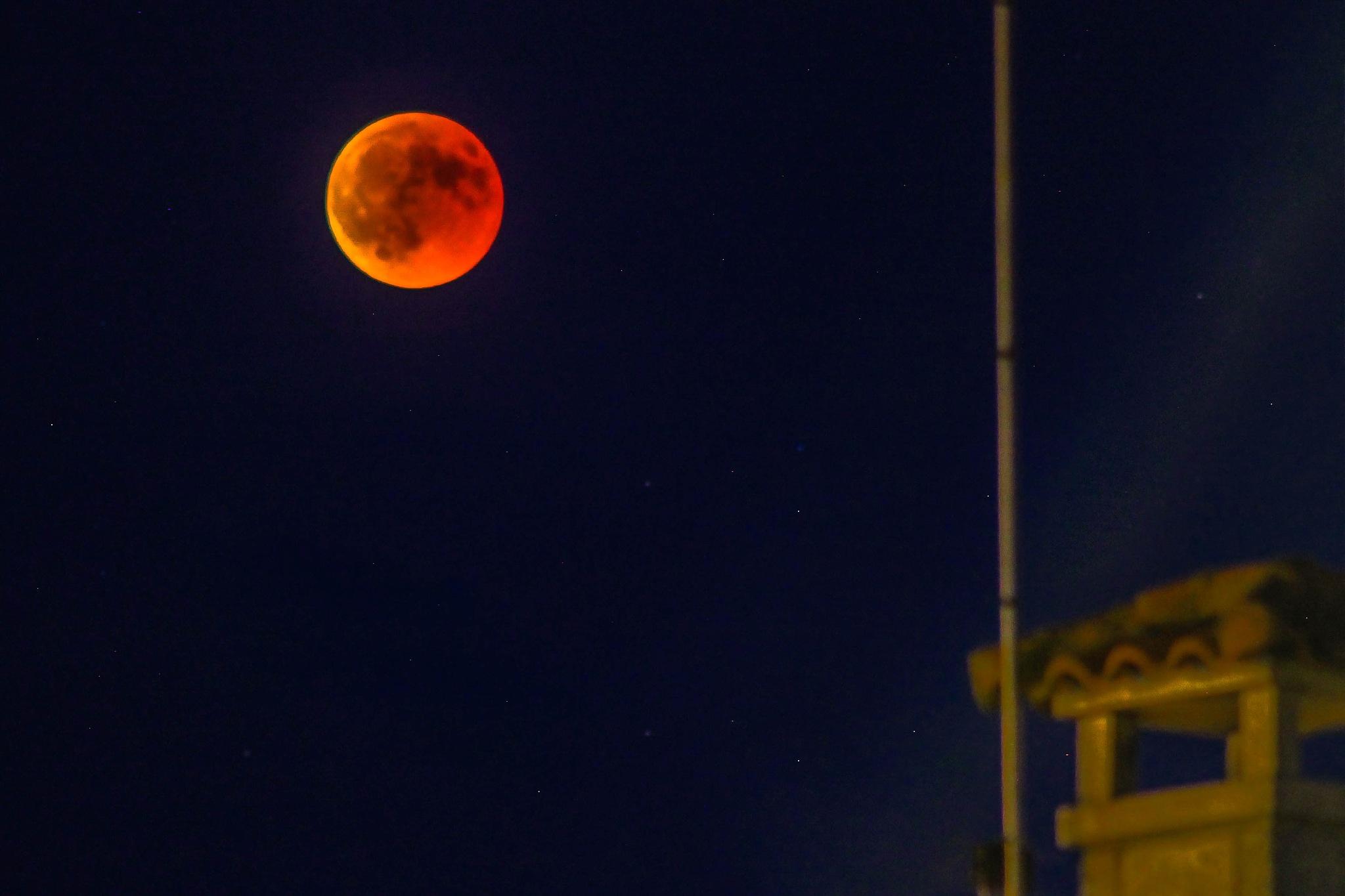 Blood Moon by Lamartine Dias