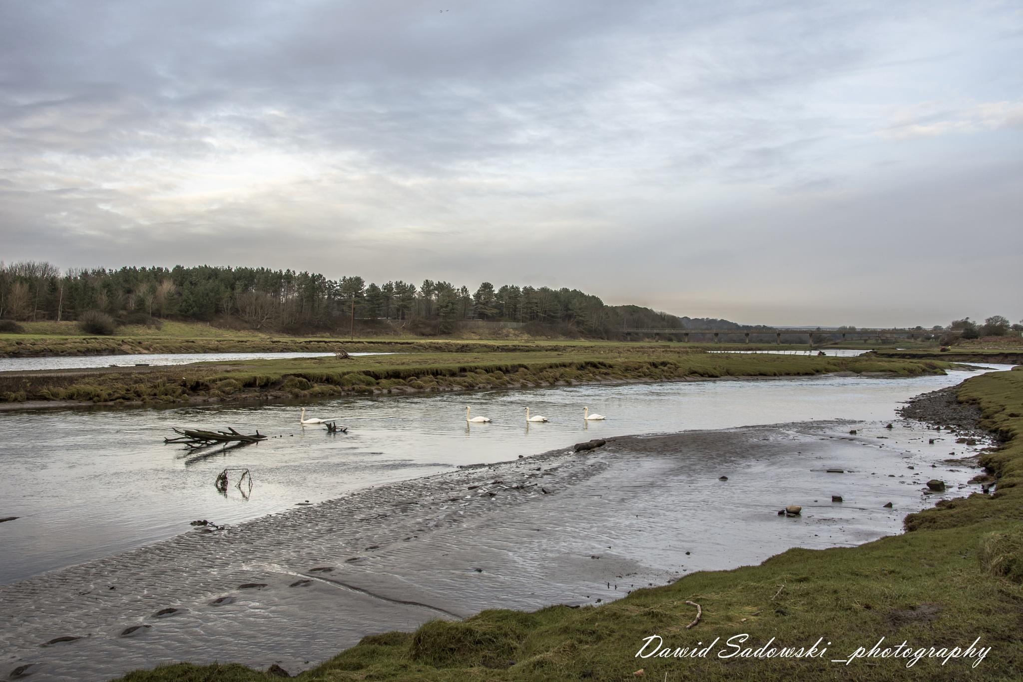 Ogmore river by Dawid Sadowski