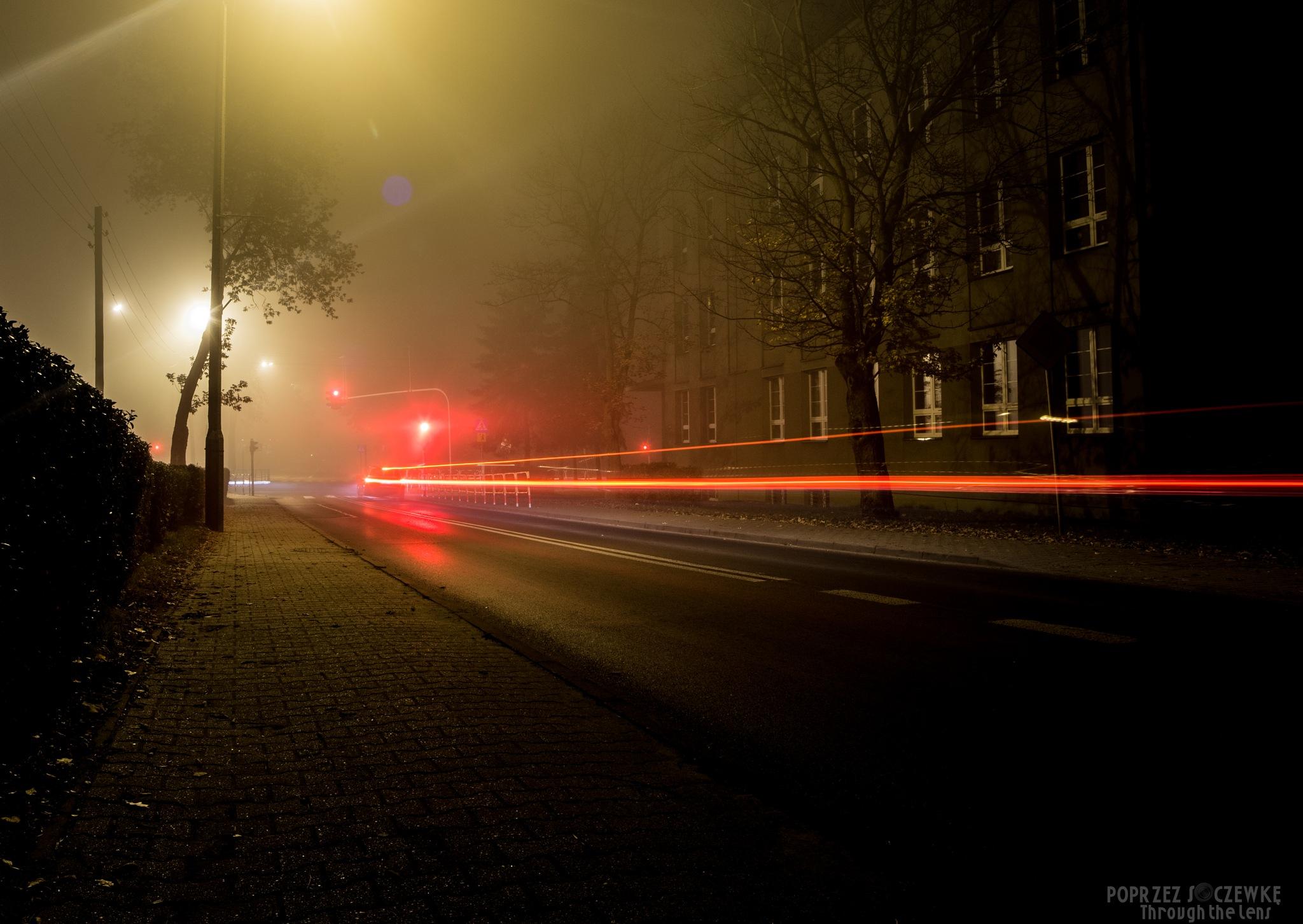 Lights by Rafal Grzegorz