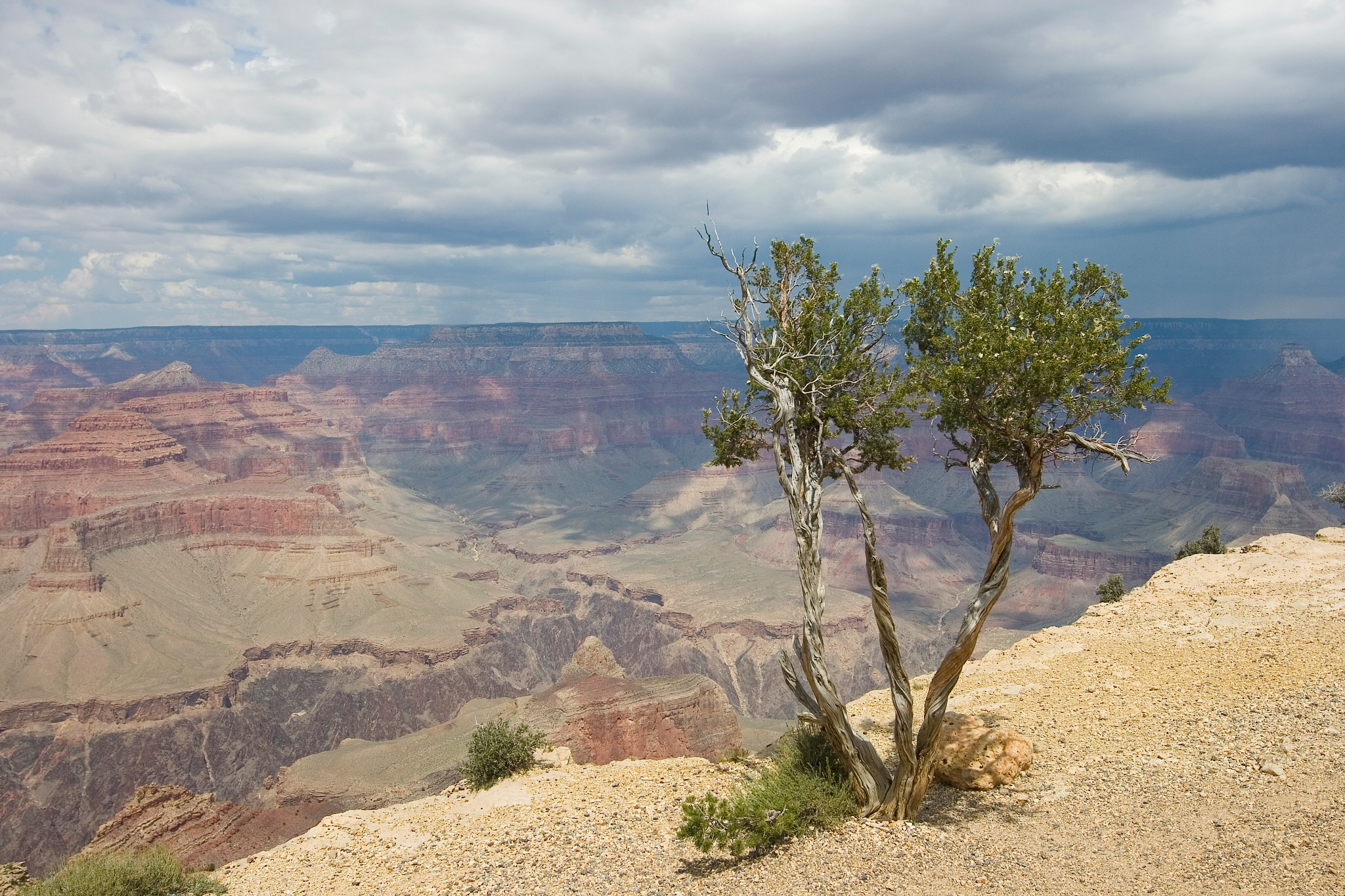 Grand Canyon National Park by Helga Kuiper