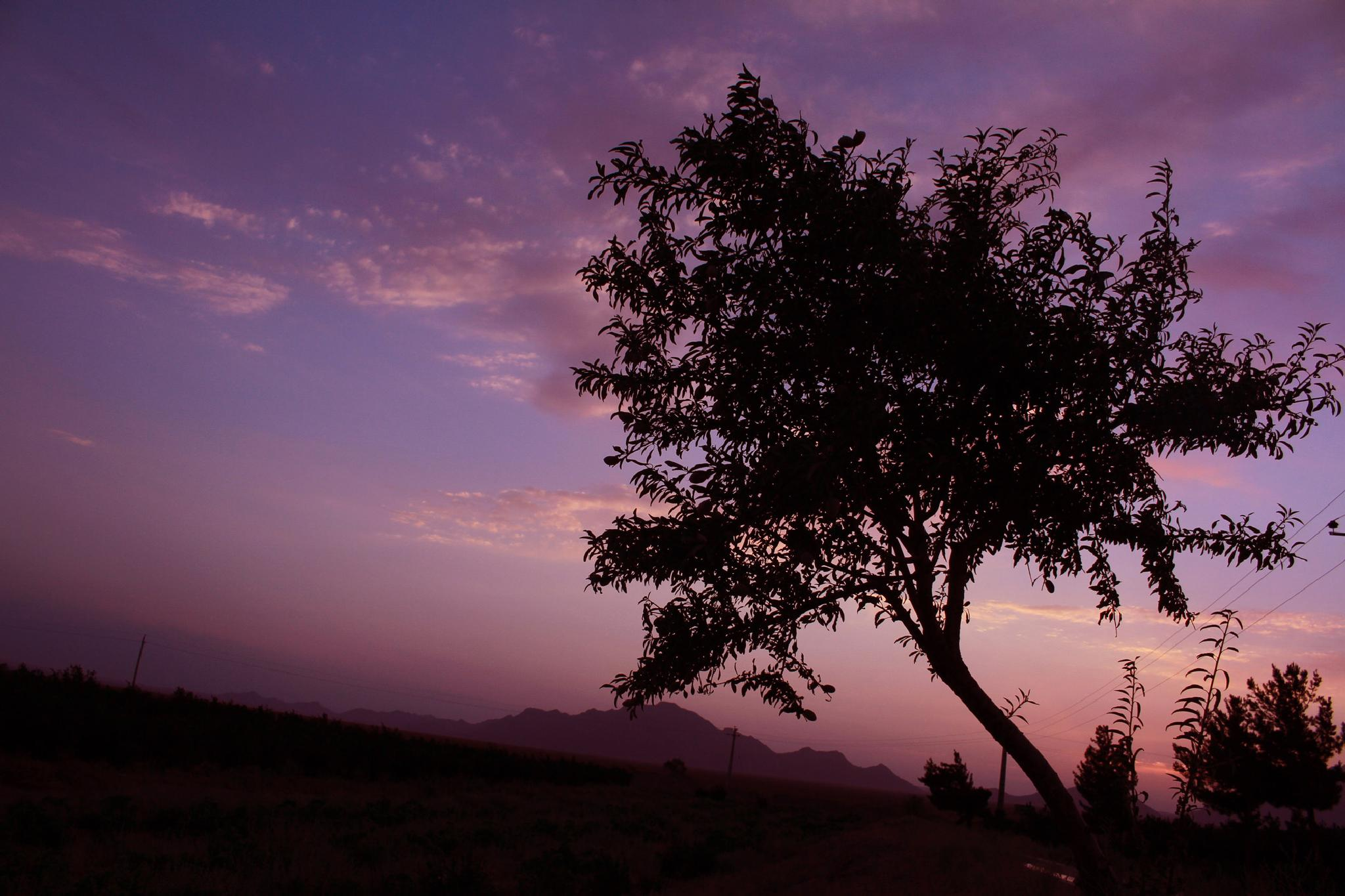 sunset 2 by hojjatnajafi6611
