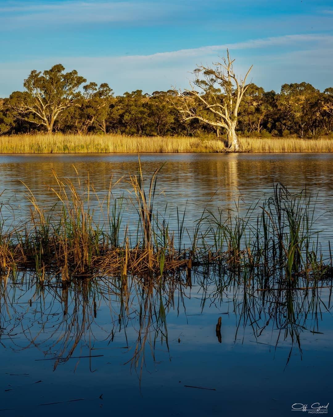 Wongulla Camp Ground, South Australia  by BronteAndChantel