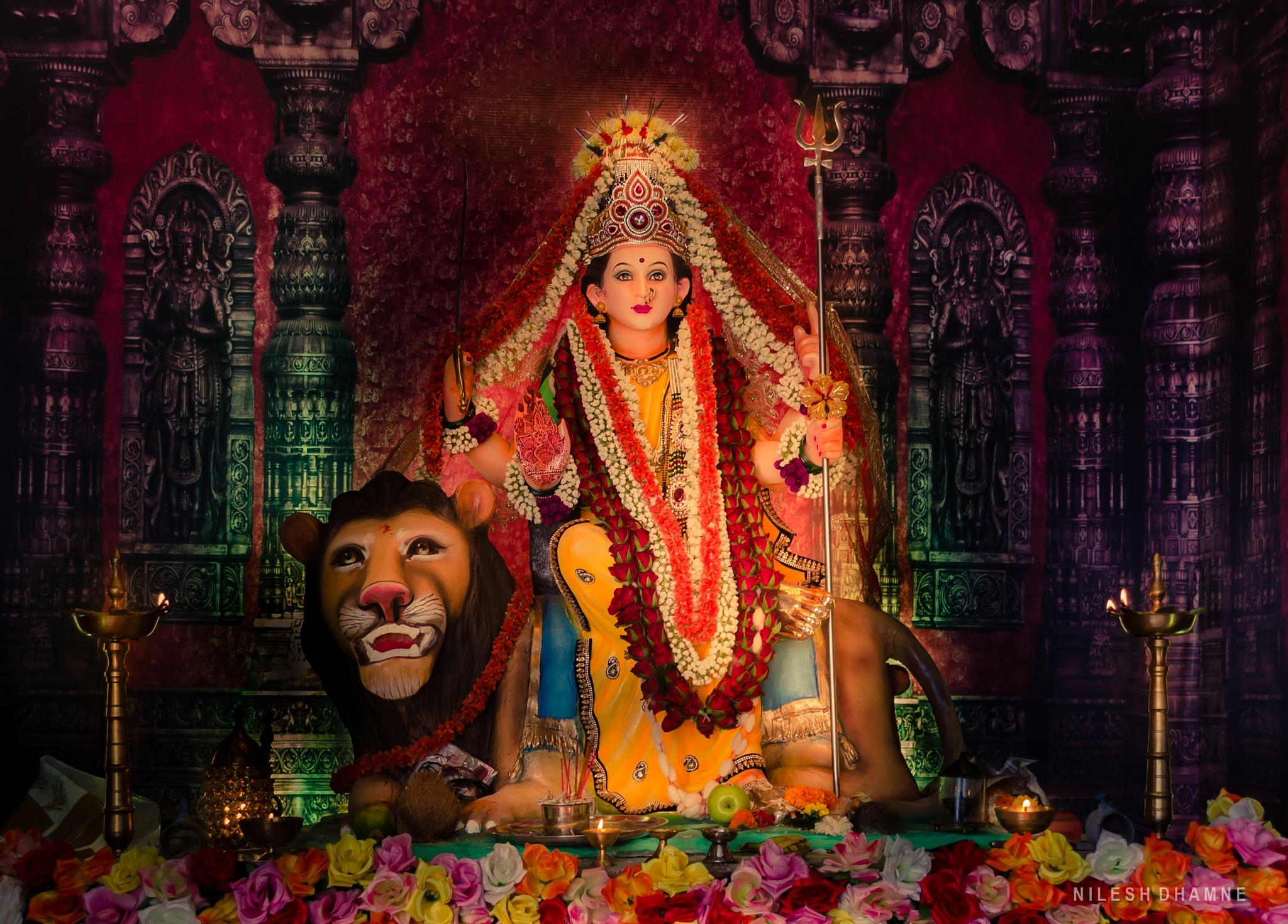 Navaratri Festival Special by Nilesh Dhamne
