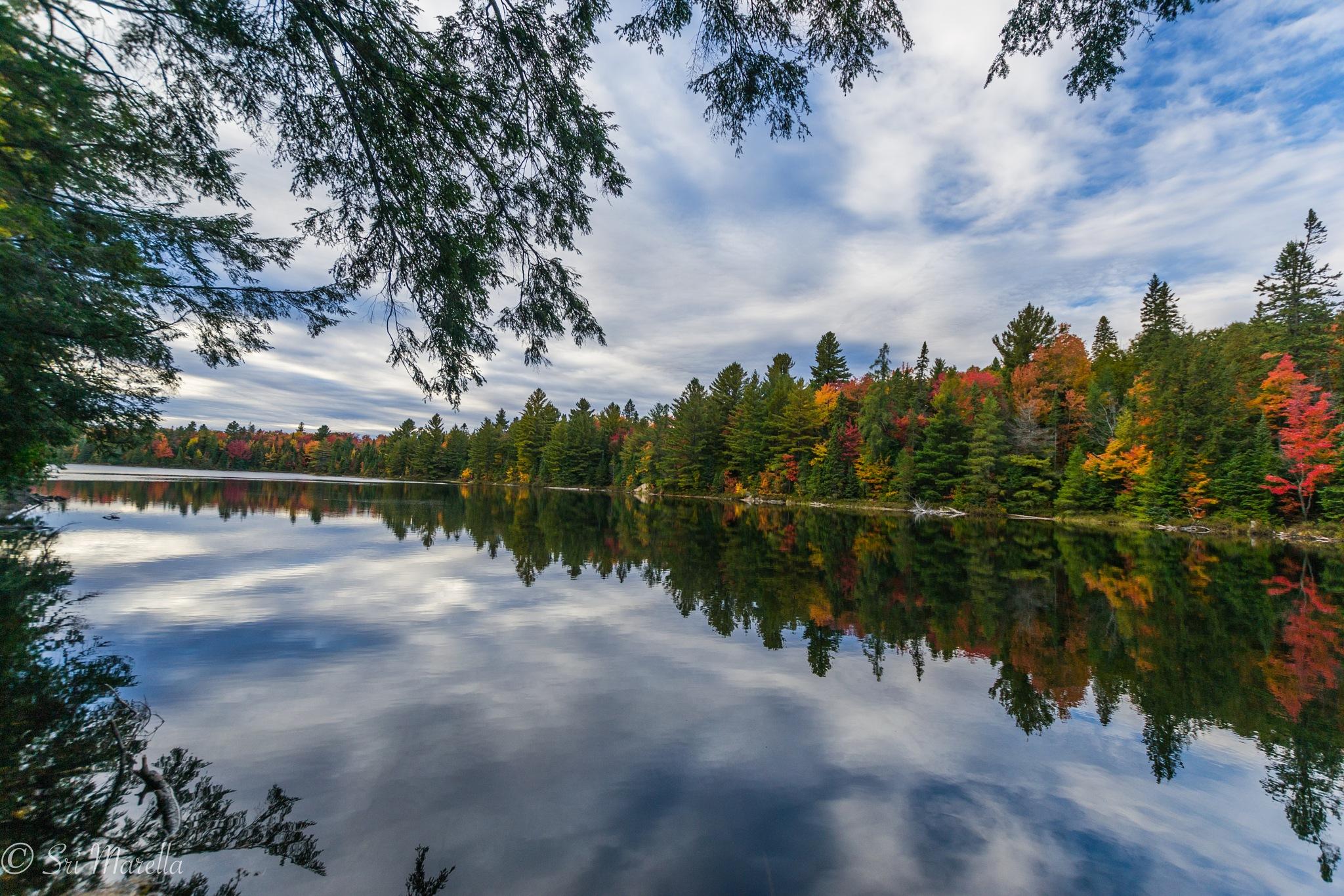 Reflections by Sri Marella