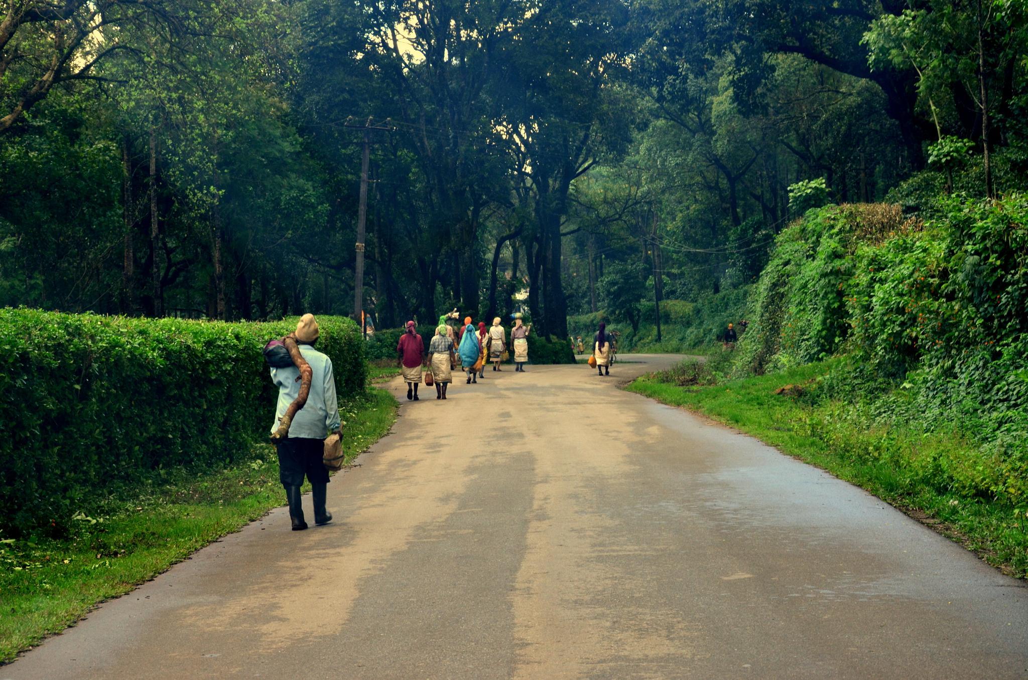 Returning Home After A Hard Day's Work... by sriramshankars