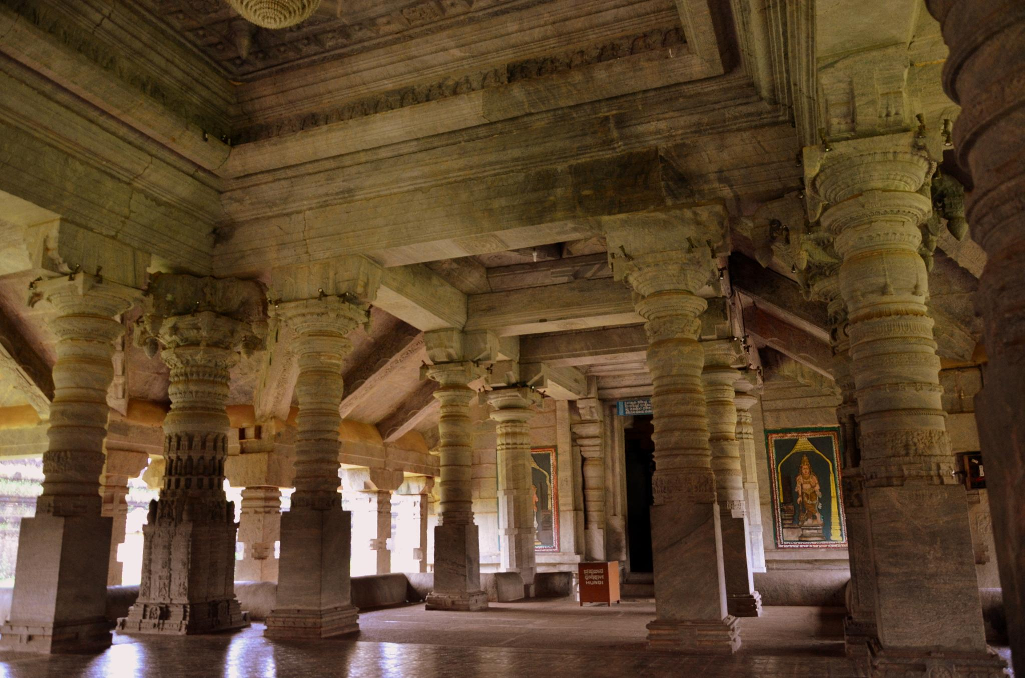 So many pillars, each is different from the other...Master Craftsmanship! by sriramshankars