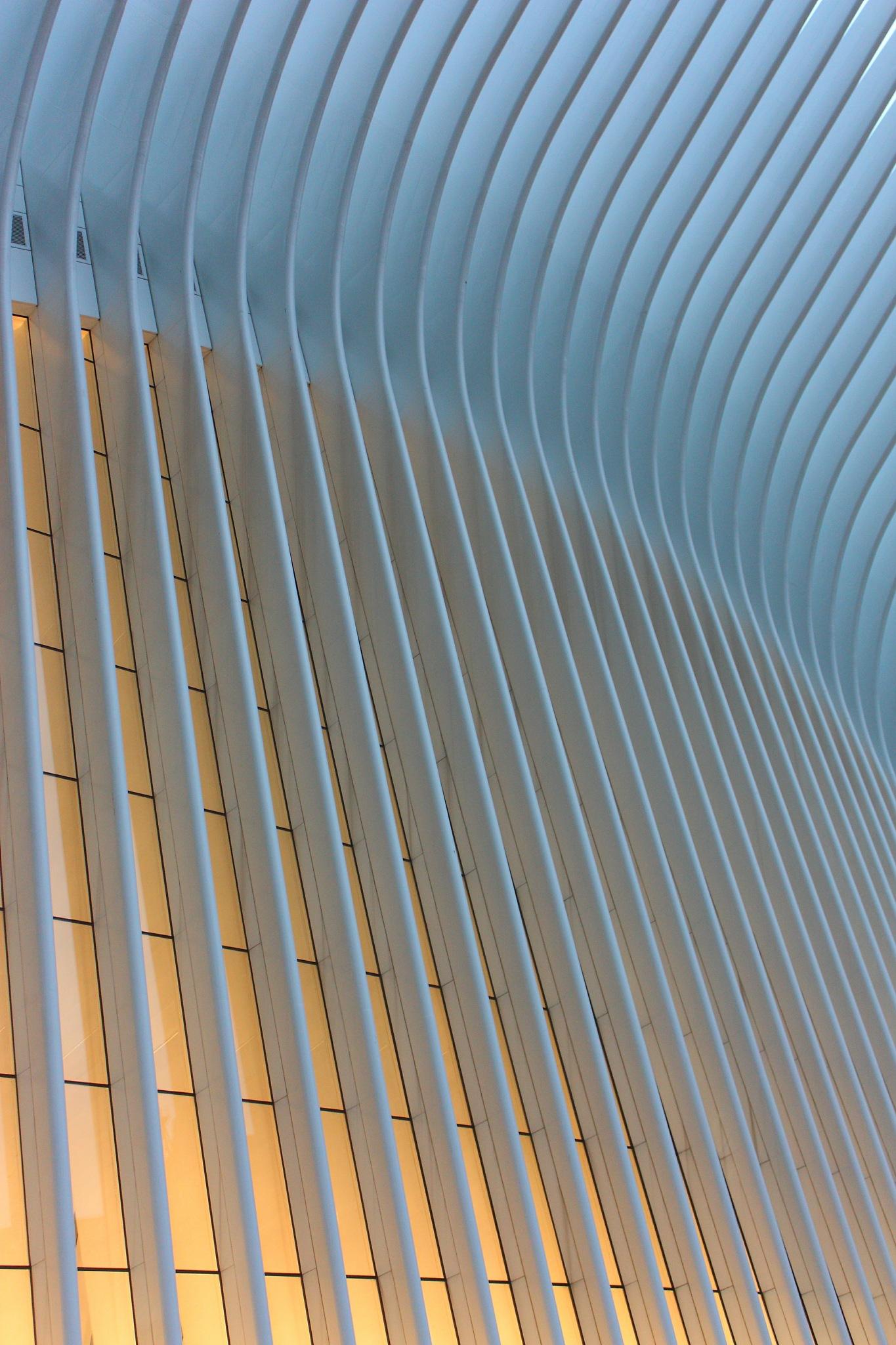 Oculus, WTC by Dane Maricic
