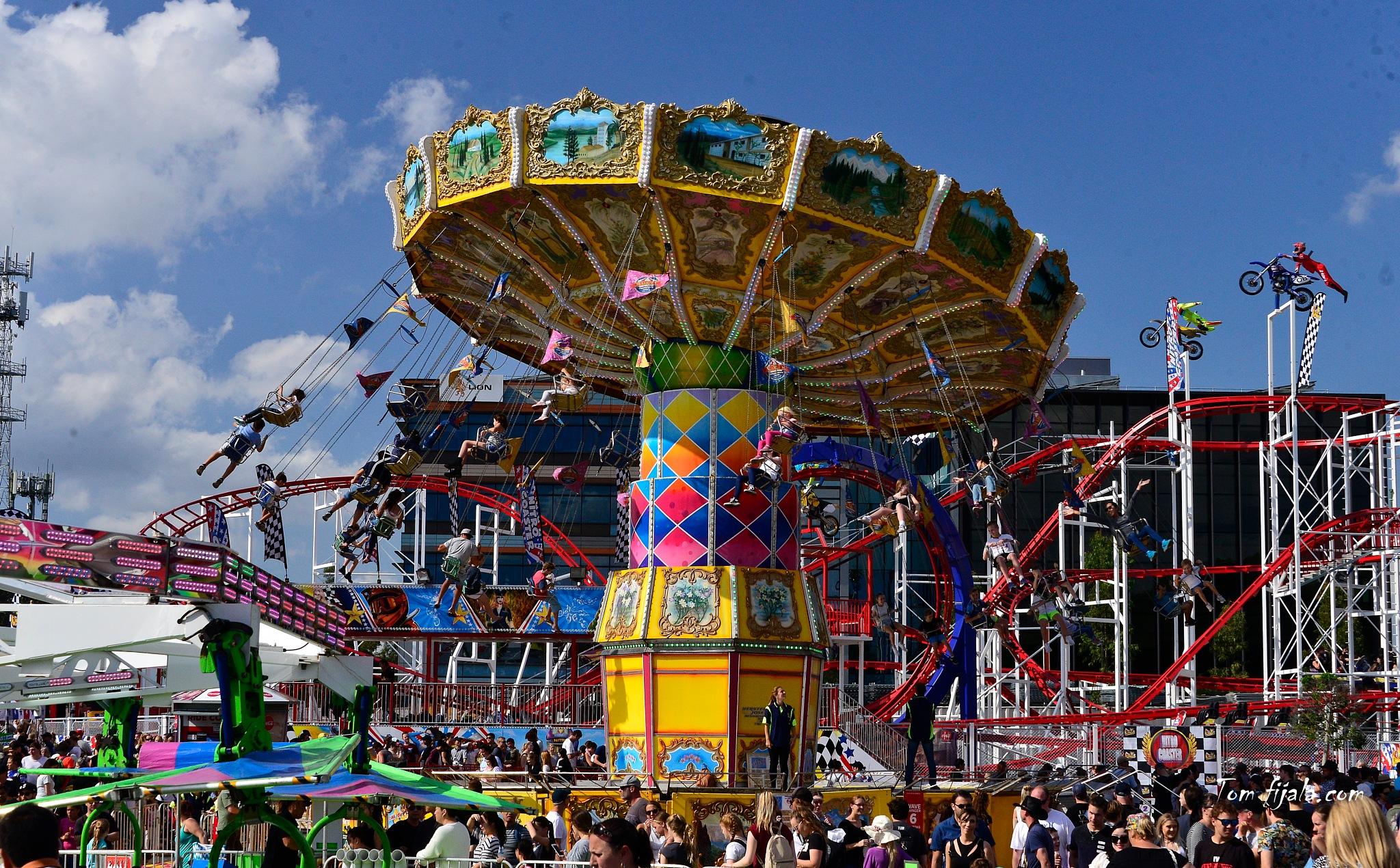 maerry-go-round by Tom Fijala