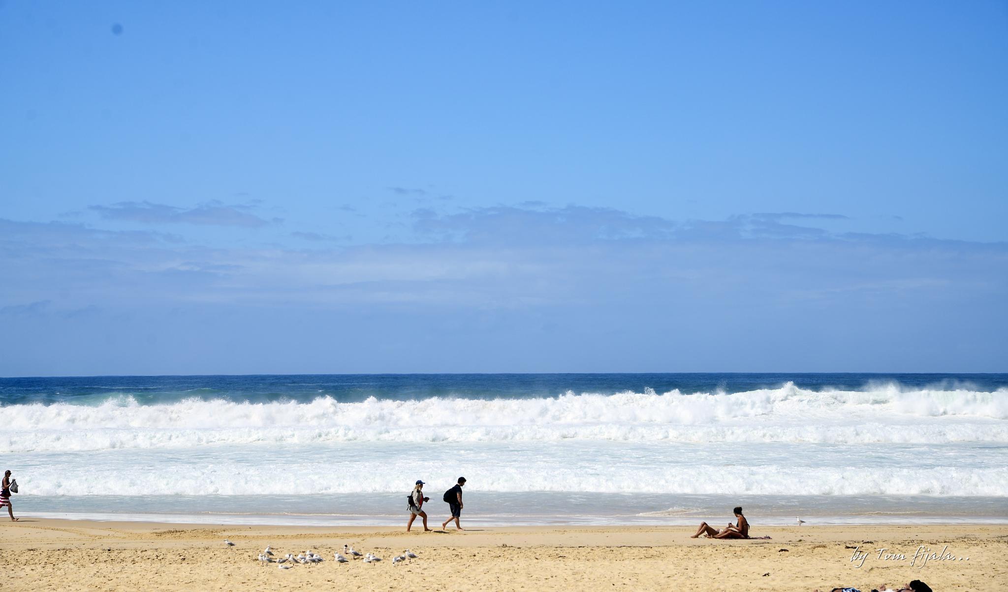 Bondi Beach.... by Tom Fijala