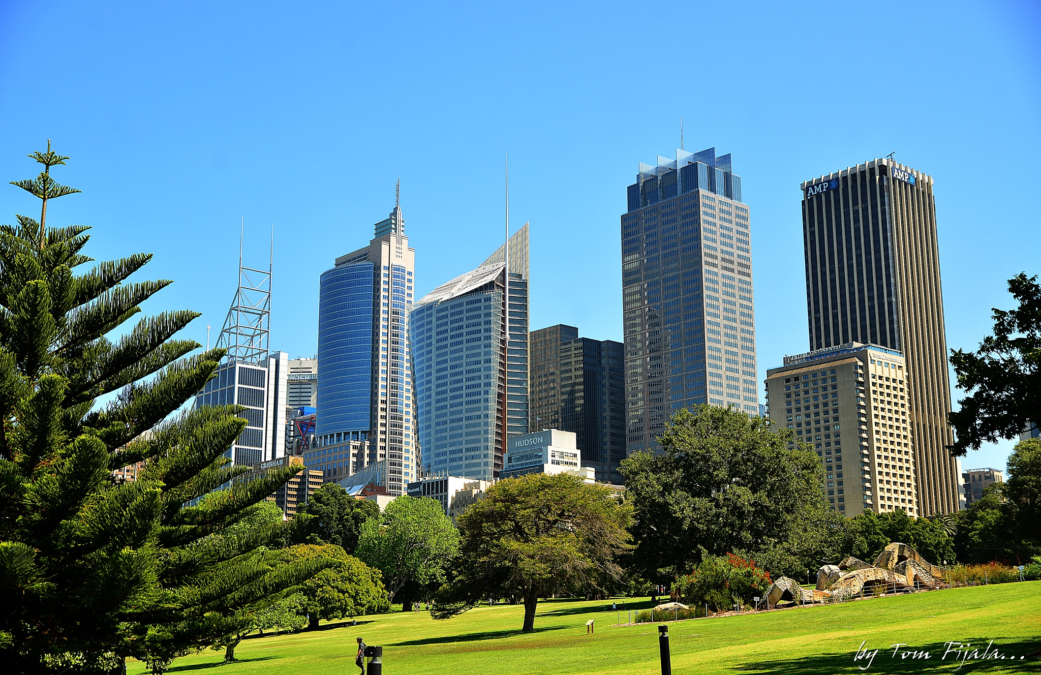 Sydney by Tom Fijala
