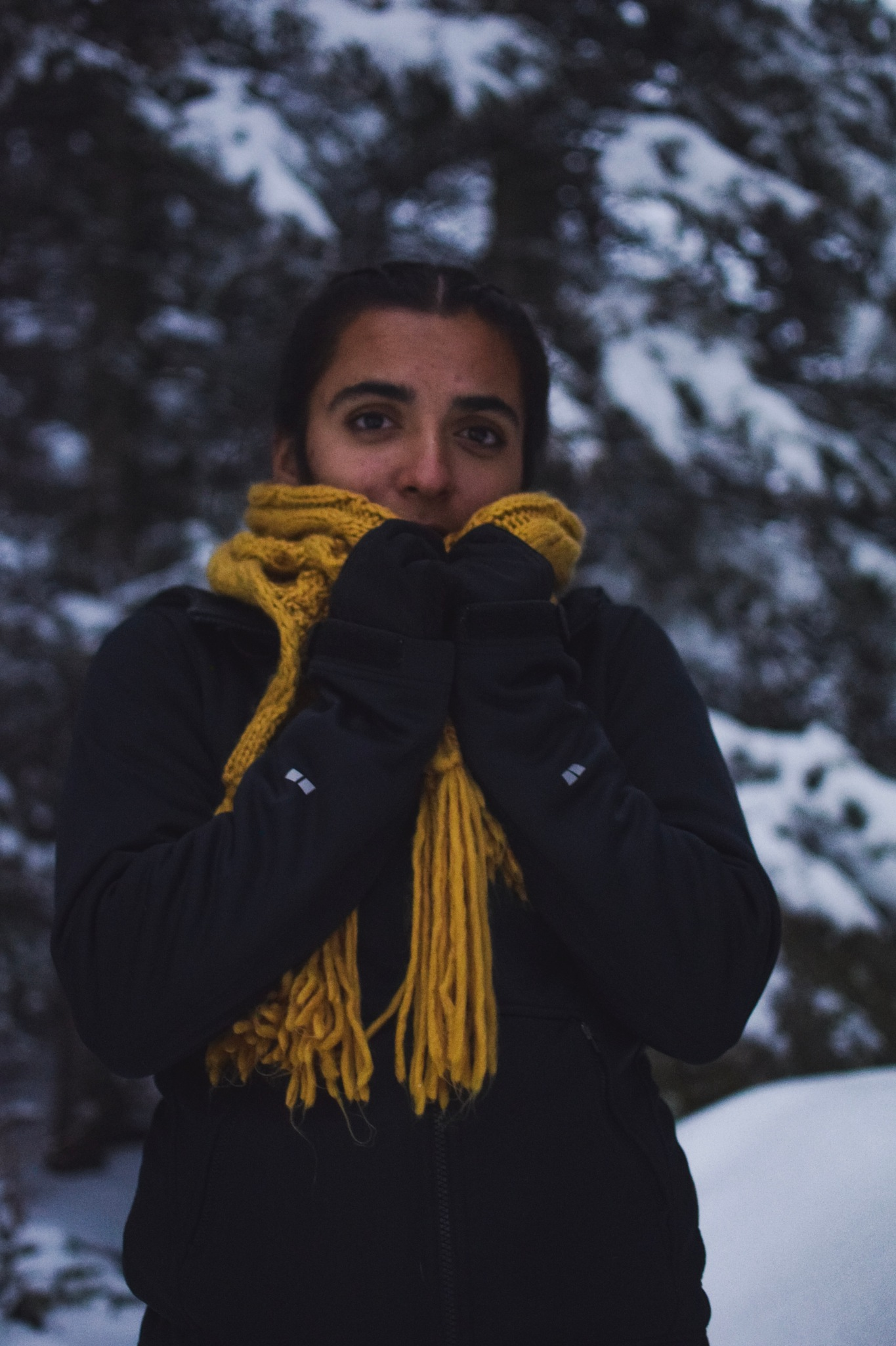 Mila by Ariana Rodriguez