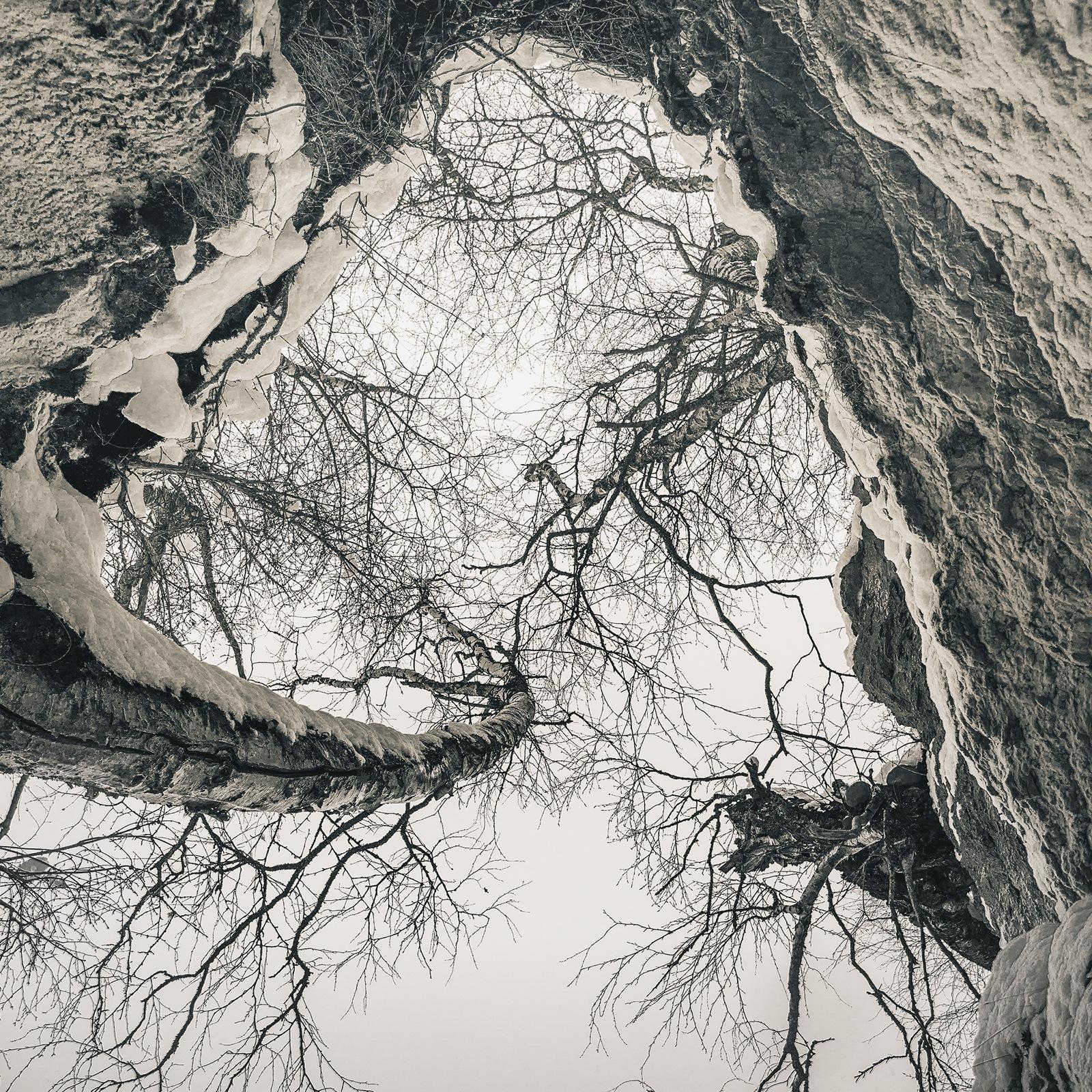 Рэгтайм by Alexey Kalugin