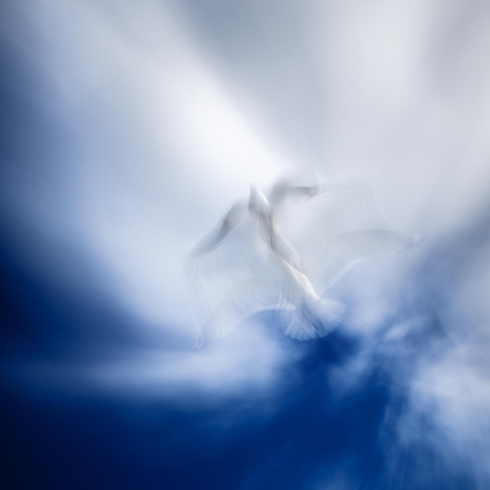 Ангел by Alexey Kalugin