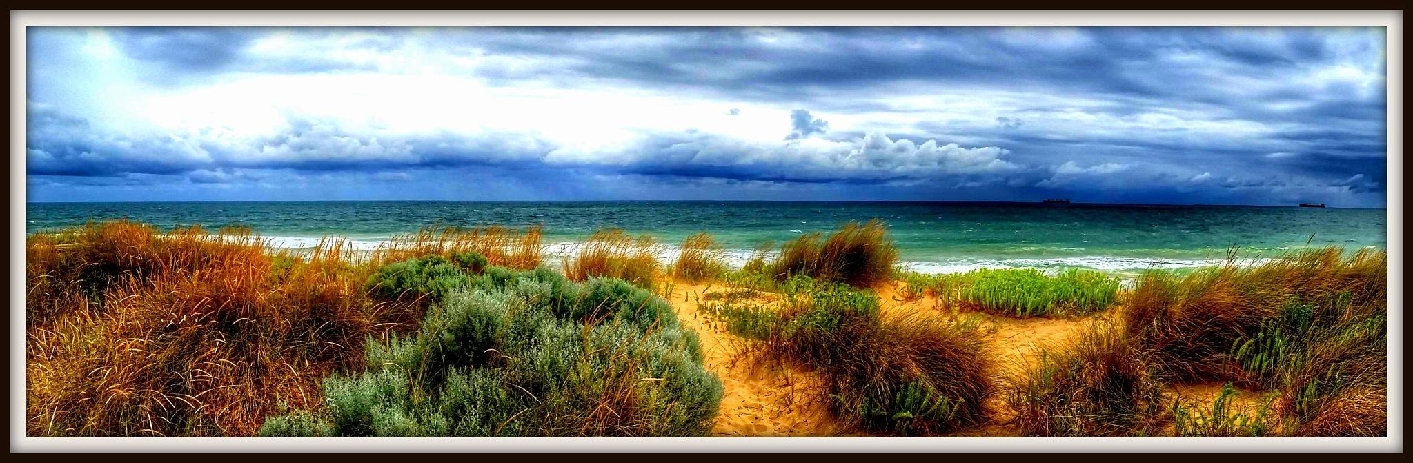 Seascape by Kathleen Audrey Lane
